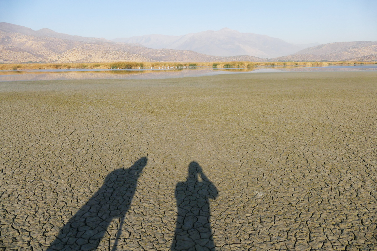 Noah and Fred cast shadows on a dried up mudflat as they scan for distant birds. Noah Strycker