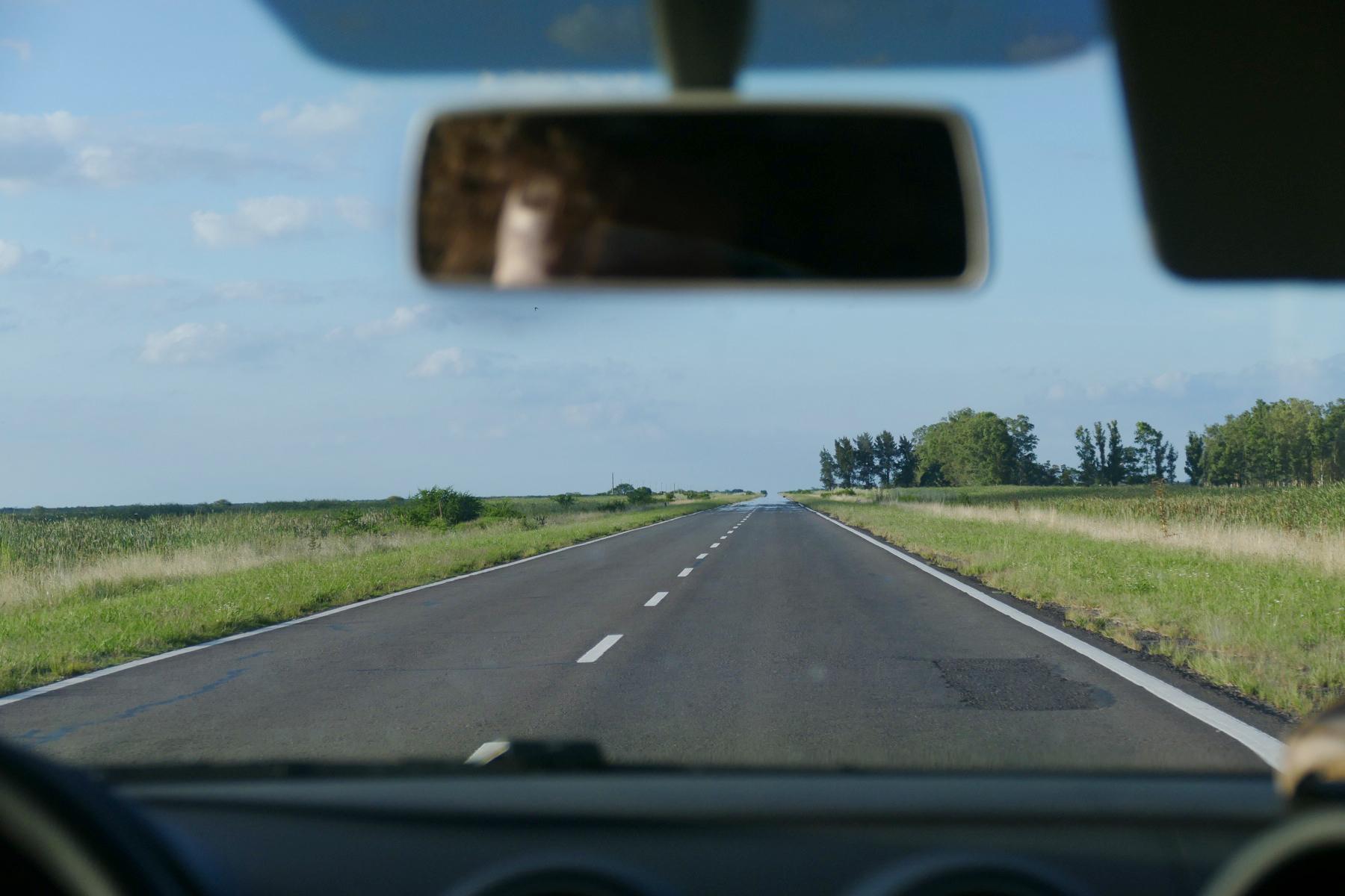 The wetlands of Entre Rios, seen through the windshield of Noah's rental car. Noah Strycker