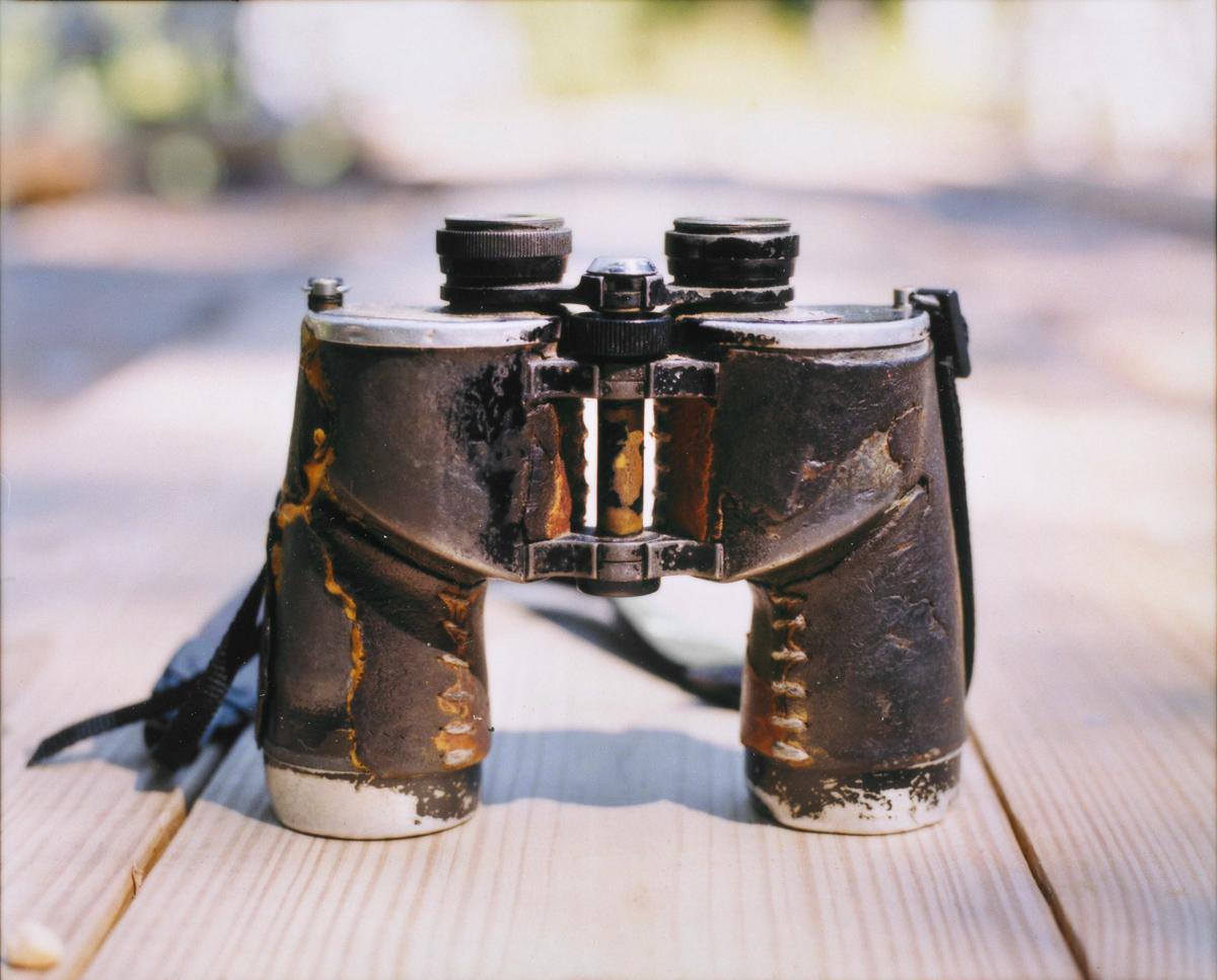 Chandler Robbins' binoculars Robert Wright
