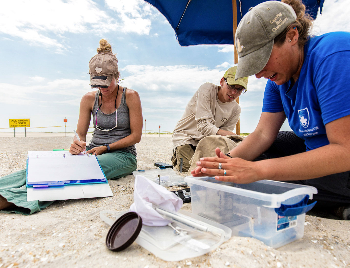 Michelle Stantial and team recording bird data the old-fashioned way. Jim Verhagen
