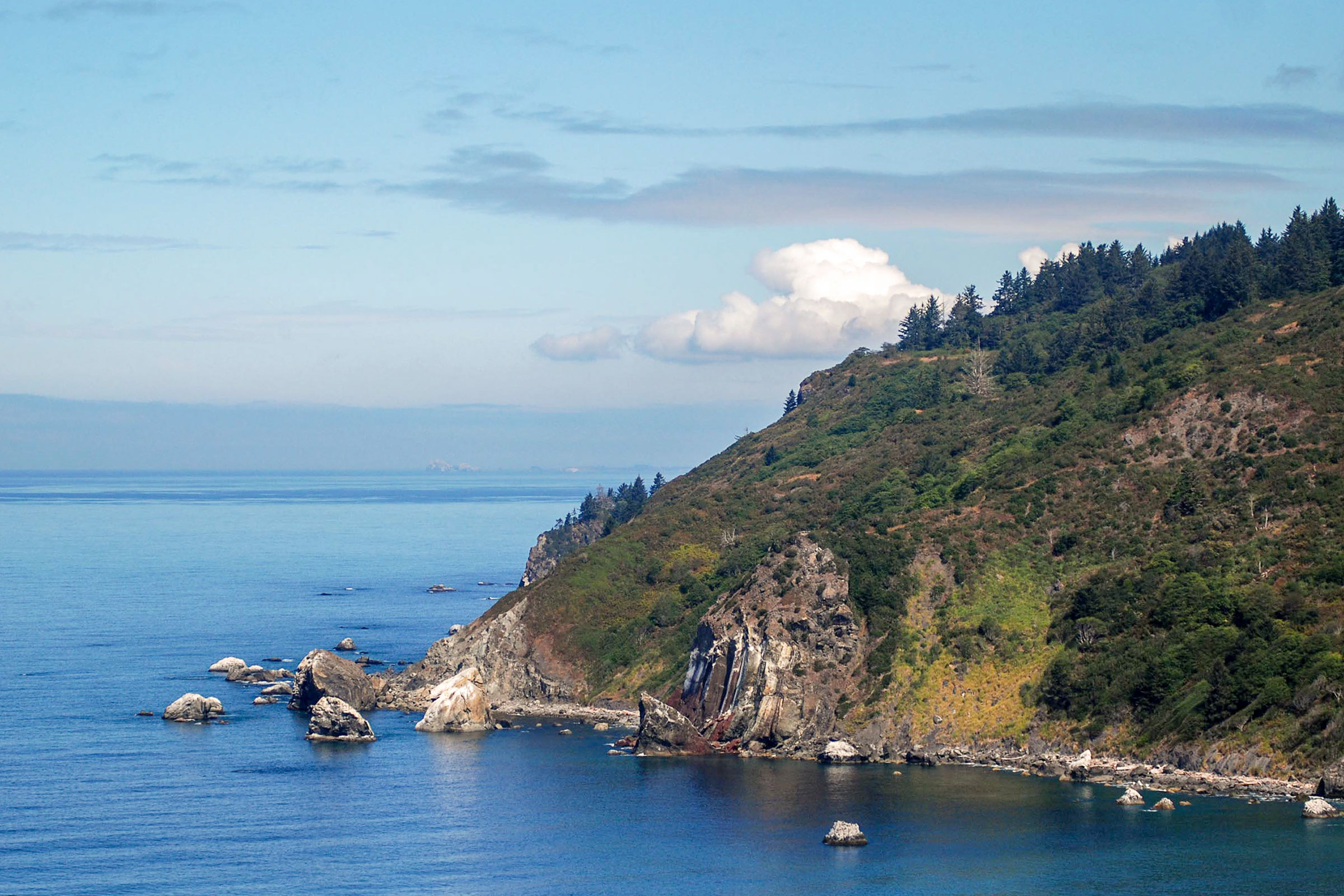 The bluffs to the south of the Klamath River mouth are expected to provide movement corridors (high winds), potential food resources if marine mammals wash up, and roosting habitat for condors. Matt Mais/Yurok Tribe