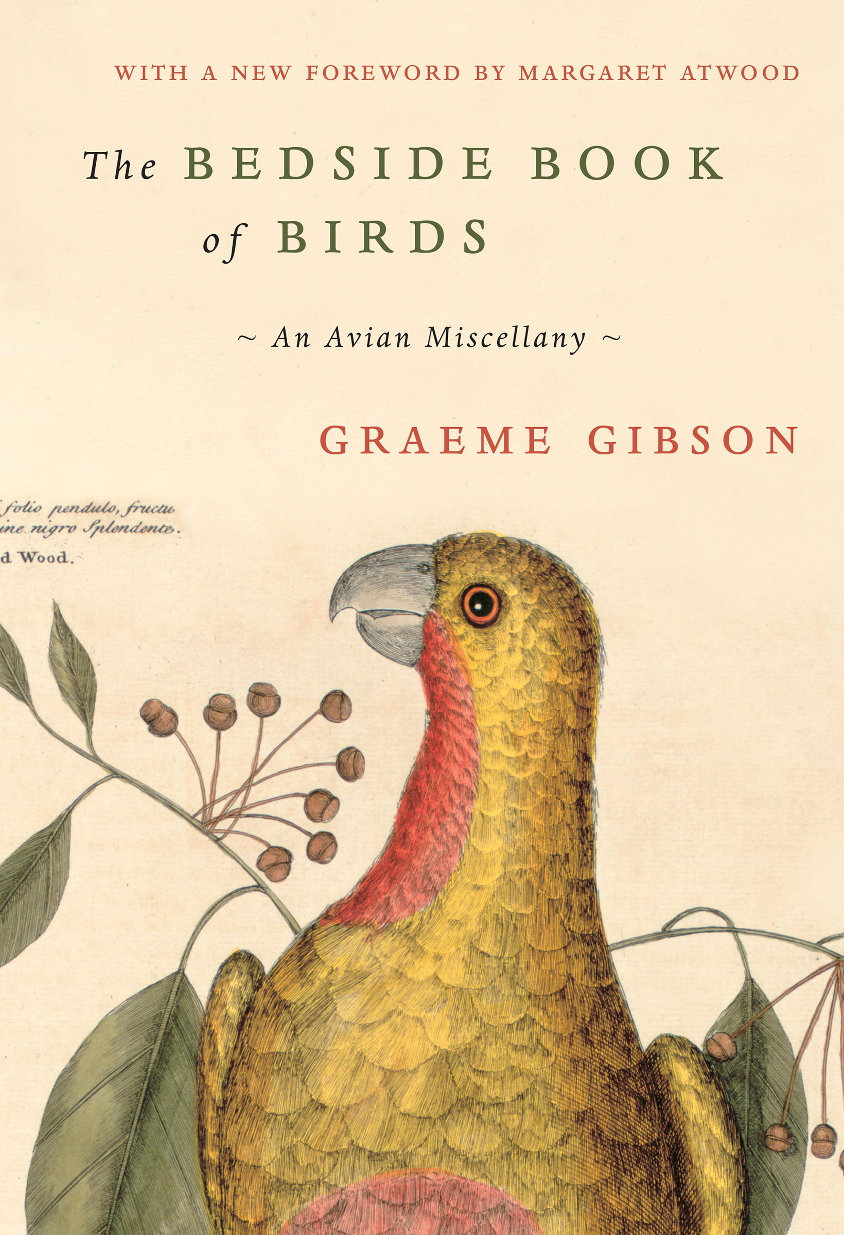 Cover of The Bedside Book of Birds by Graeme Gibson.