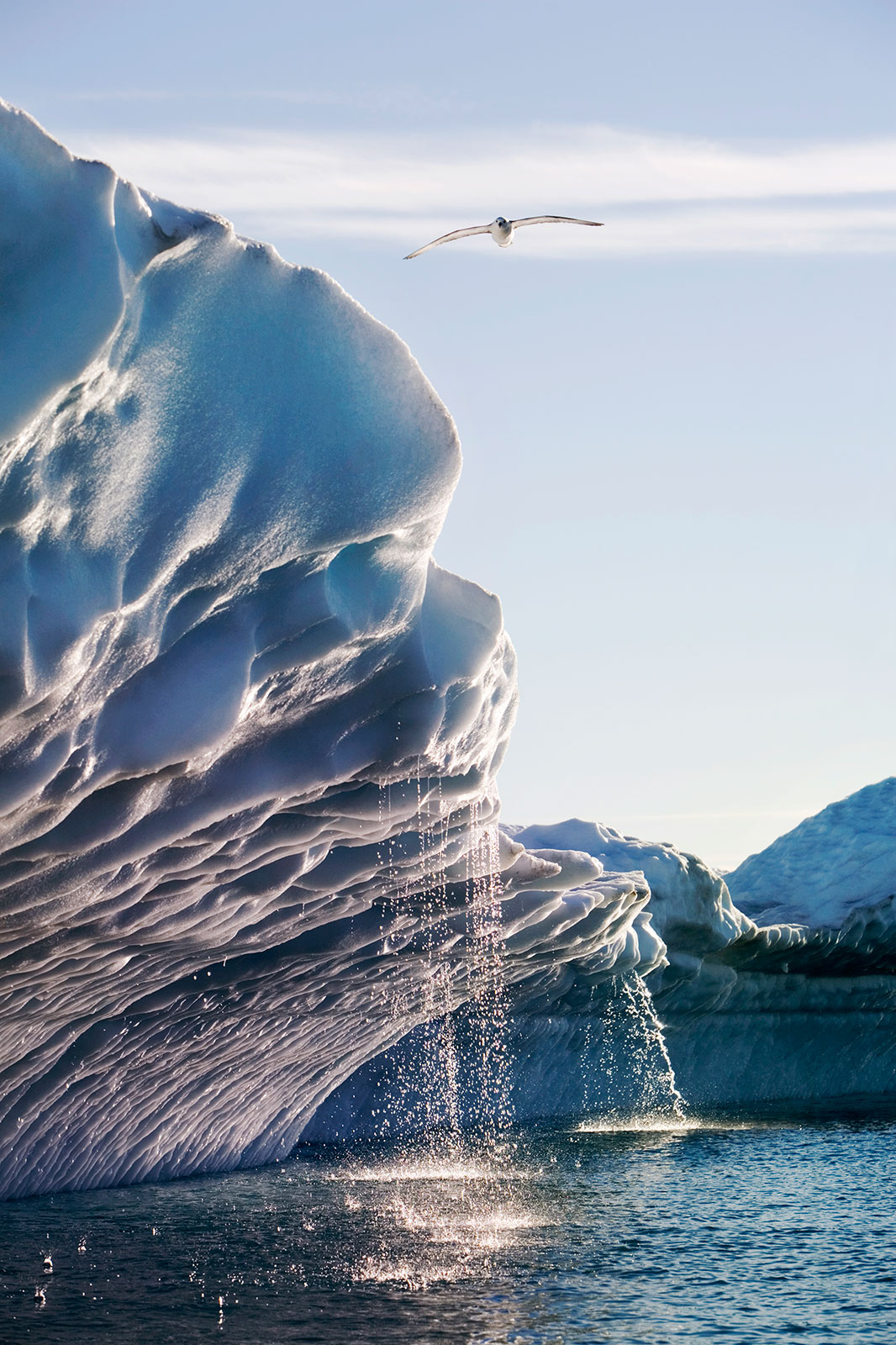 Fast-melting glaciers are an obvious sign of a warming world. Other changes, including shifting bird ranges, are just now coming into focus. Photo Credit: Paul Souders/WorldFoto