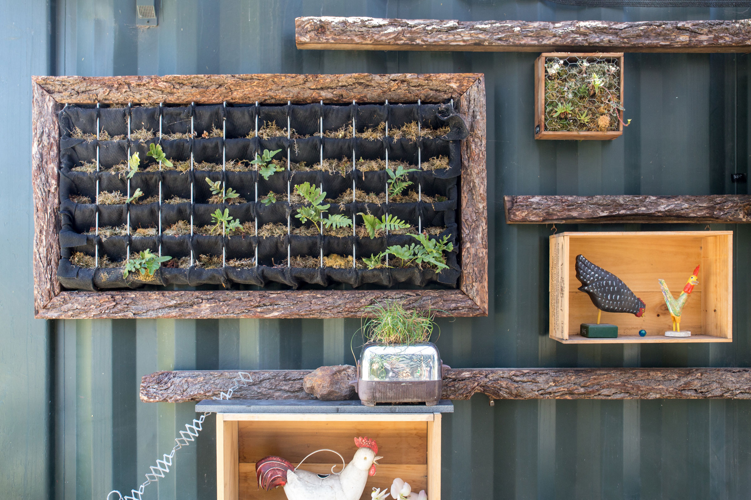Creativity abounds in small spaces. Build a wall planter to optimize sunlight—or even plant in broken household appliances. Camilla Cerea/Audubon