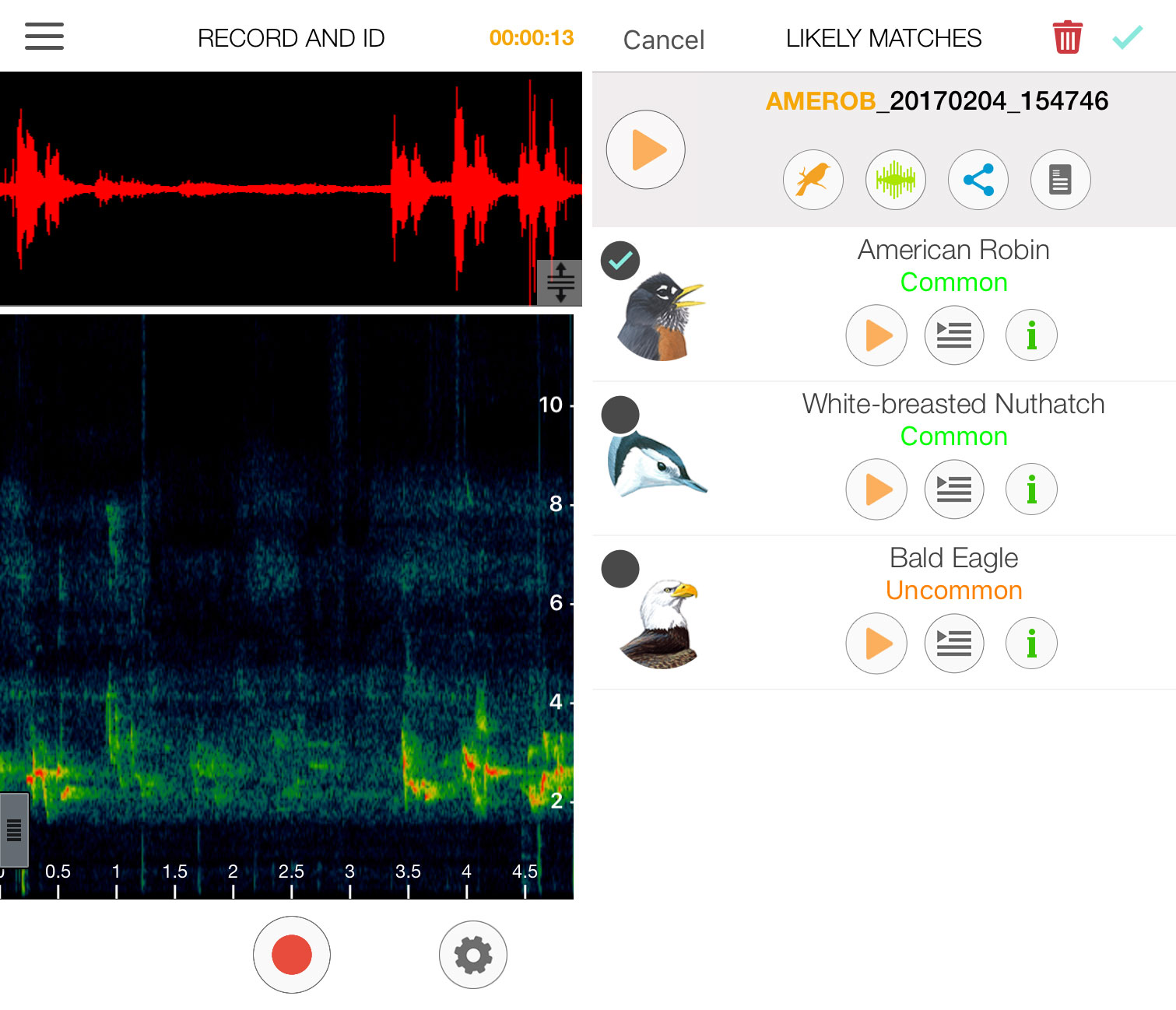 From left to right: Sonograms comparing the field recording with the app's pre-recorded clips; the top three options, ranked by probability. Courtesy of Jayme Moye