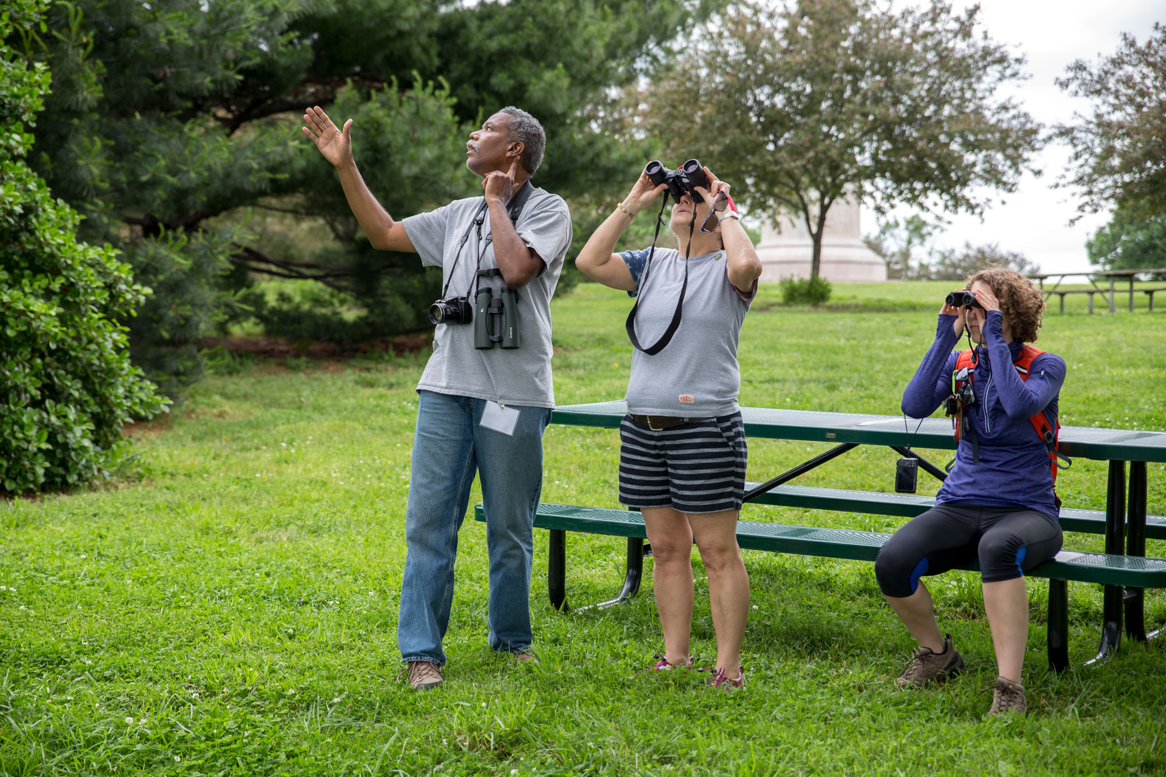 A Blackburnian Warbler steals the spotlight during our tour of Fort McHenry. Even Costley, a regular visitor and veteran birder, was impressed. Camilla Cerea/Audubon