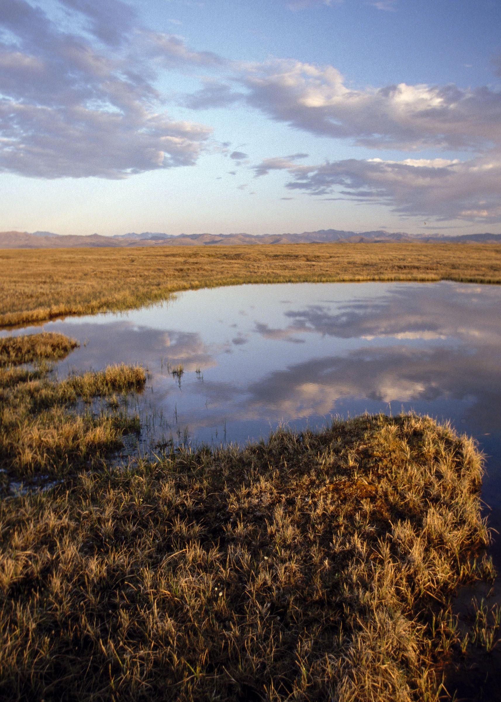 Arctic National Wildlife Refuge coastal plain. Karen Jettmar/Alamy