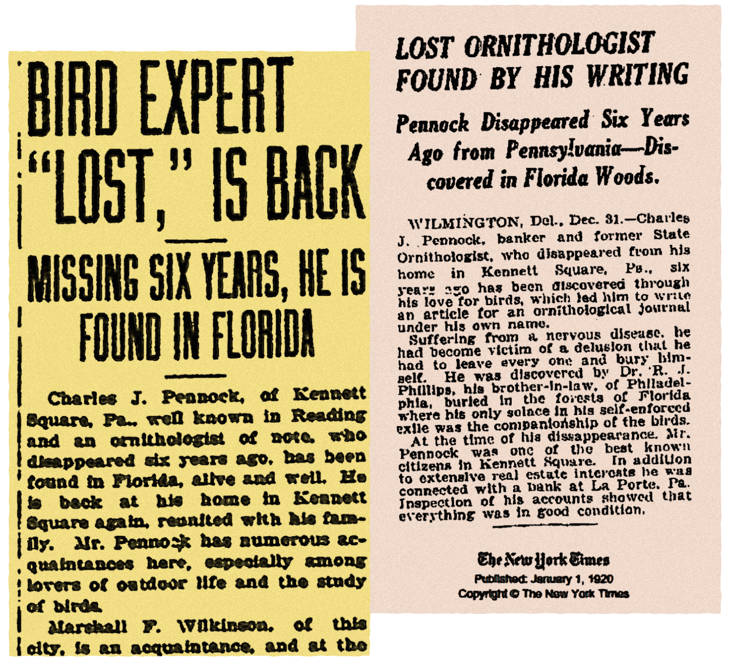 """Newspaper clippings with headliens """"Bird Expert 'Lost,' is Back"""" and """"Lost Ornithologist Found by his Writing"""""""