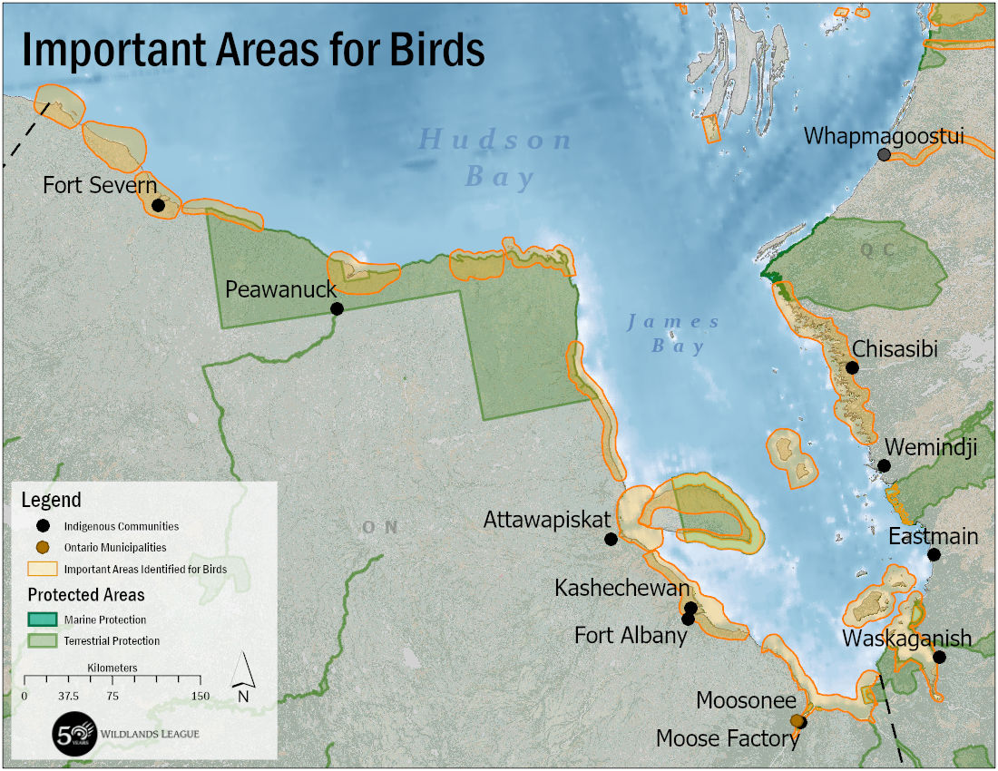 A map showing important areas for birds along the coasts of Hudson Bay and James Bay