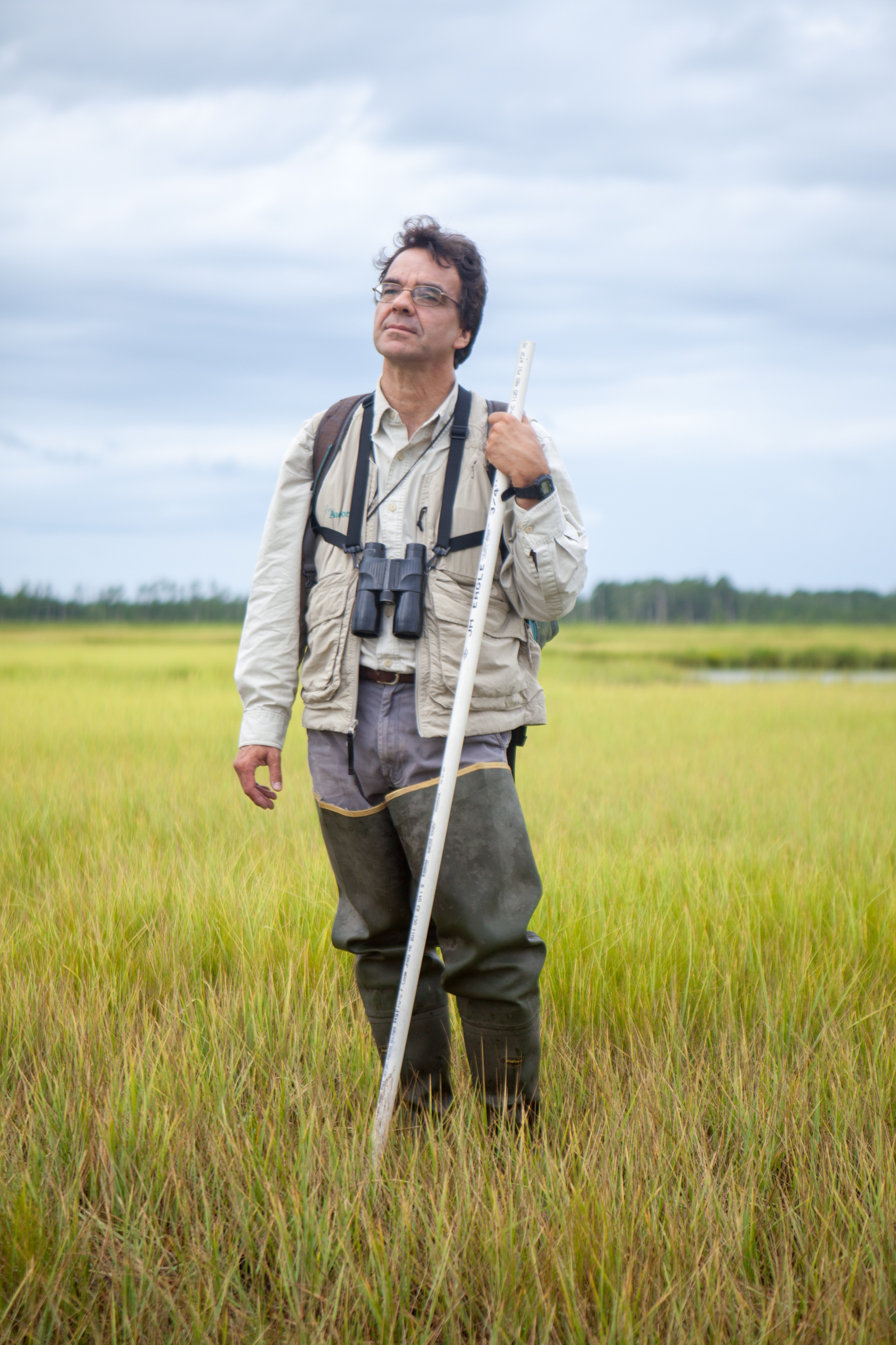 Dave Curson, Audubon Maryland-DC's director of bird conservation, stands at Blackwater National Wildlife Refuge. He carries a stick so he can extract himself when he falls into deep muddy holes. Camilla Cerea/Audubon