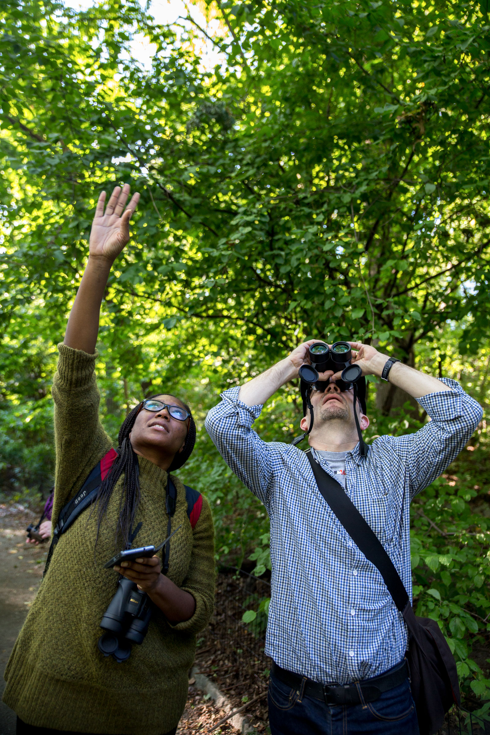 Central Park is often chock-full of birders; you're free to join them in searching for birds, or ignore them entirely. Camilla Cerea/Audubon