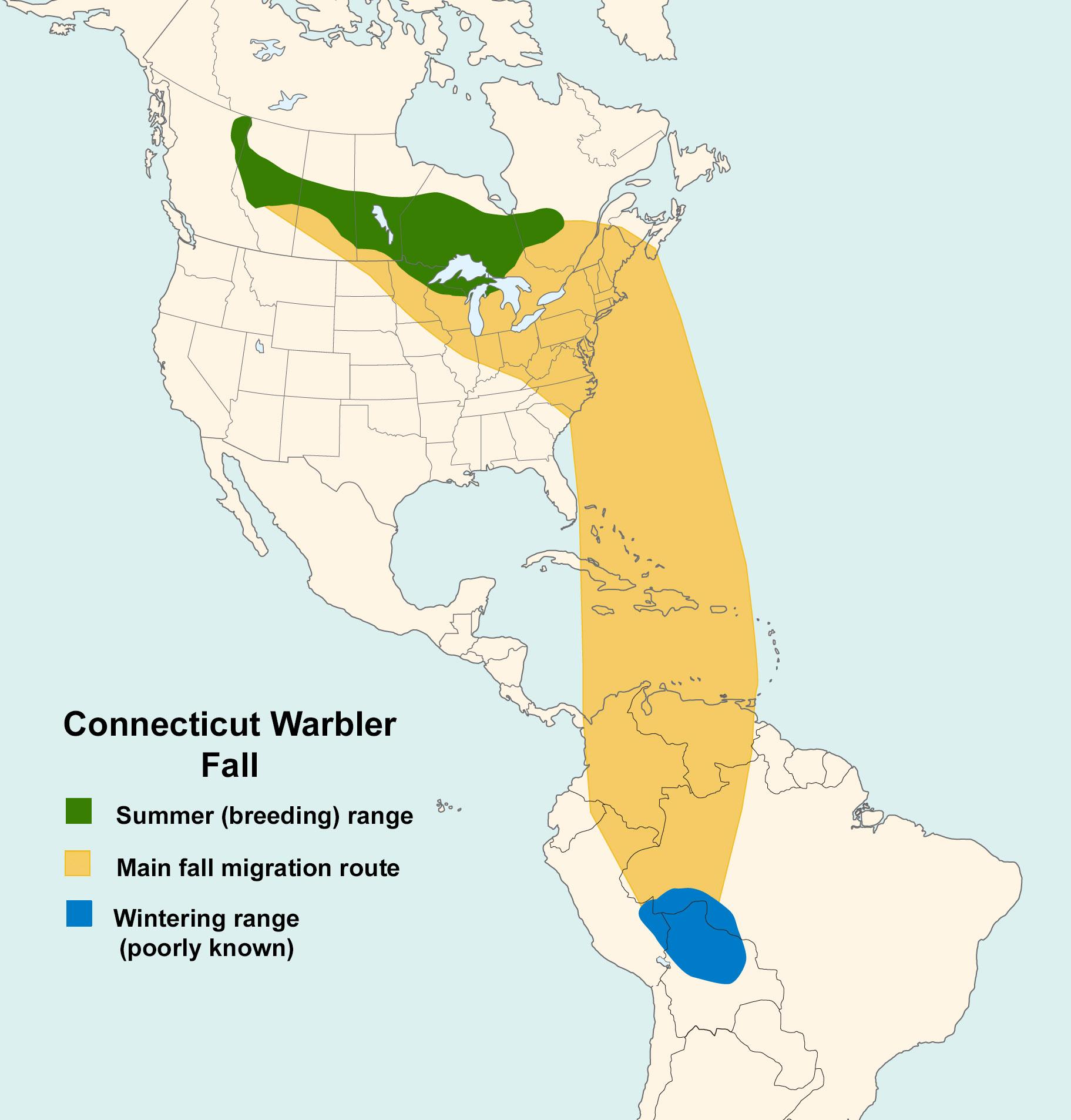Mapa ilustrado que muestra los patrones de migración de la curruca de Connecticut en el otoño.