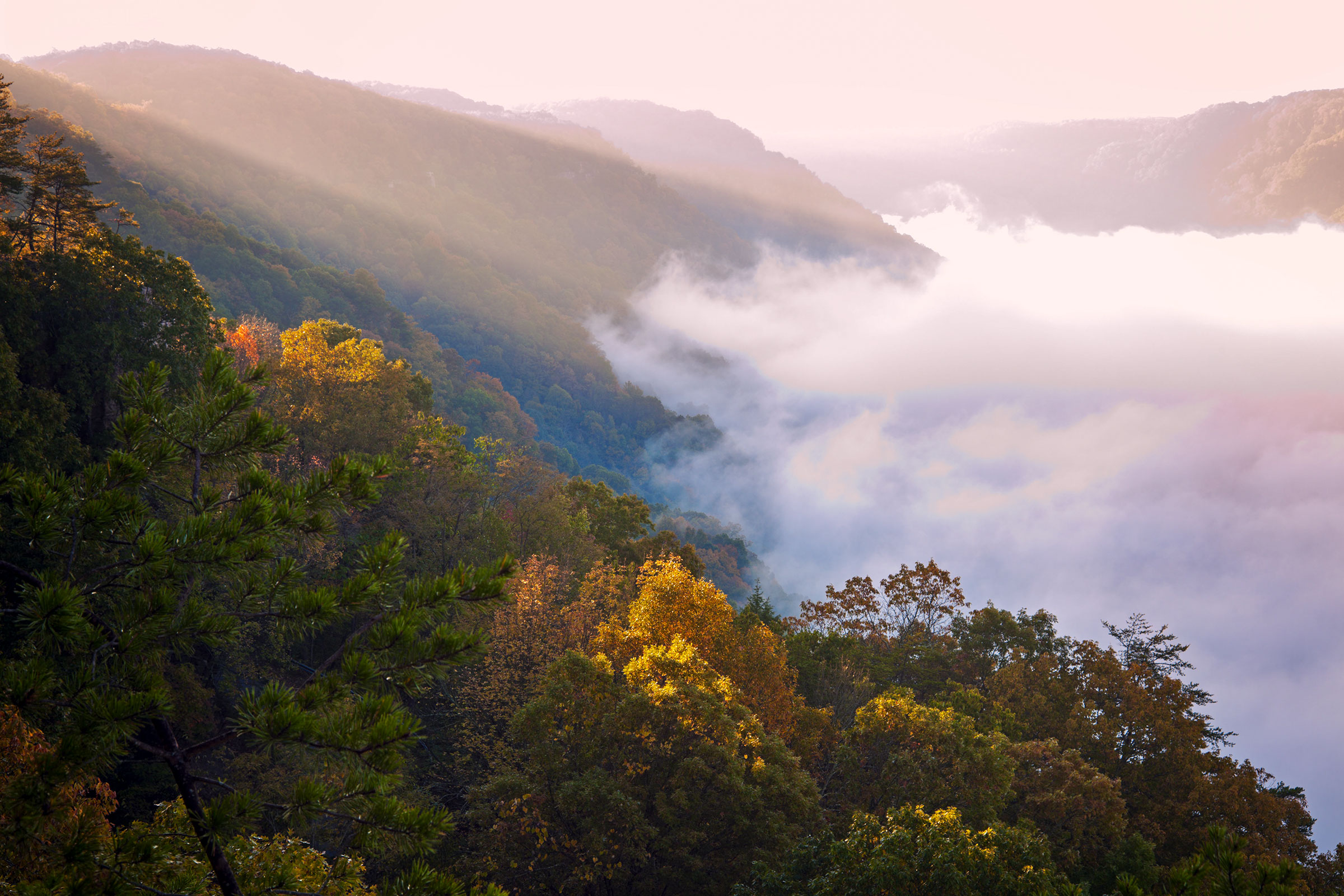 Fog rolls through New River Gorge National Park at sunrise. Henryk Sadura/Alamy