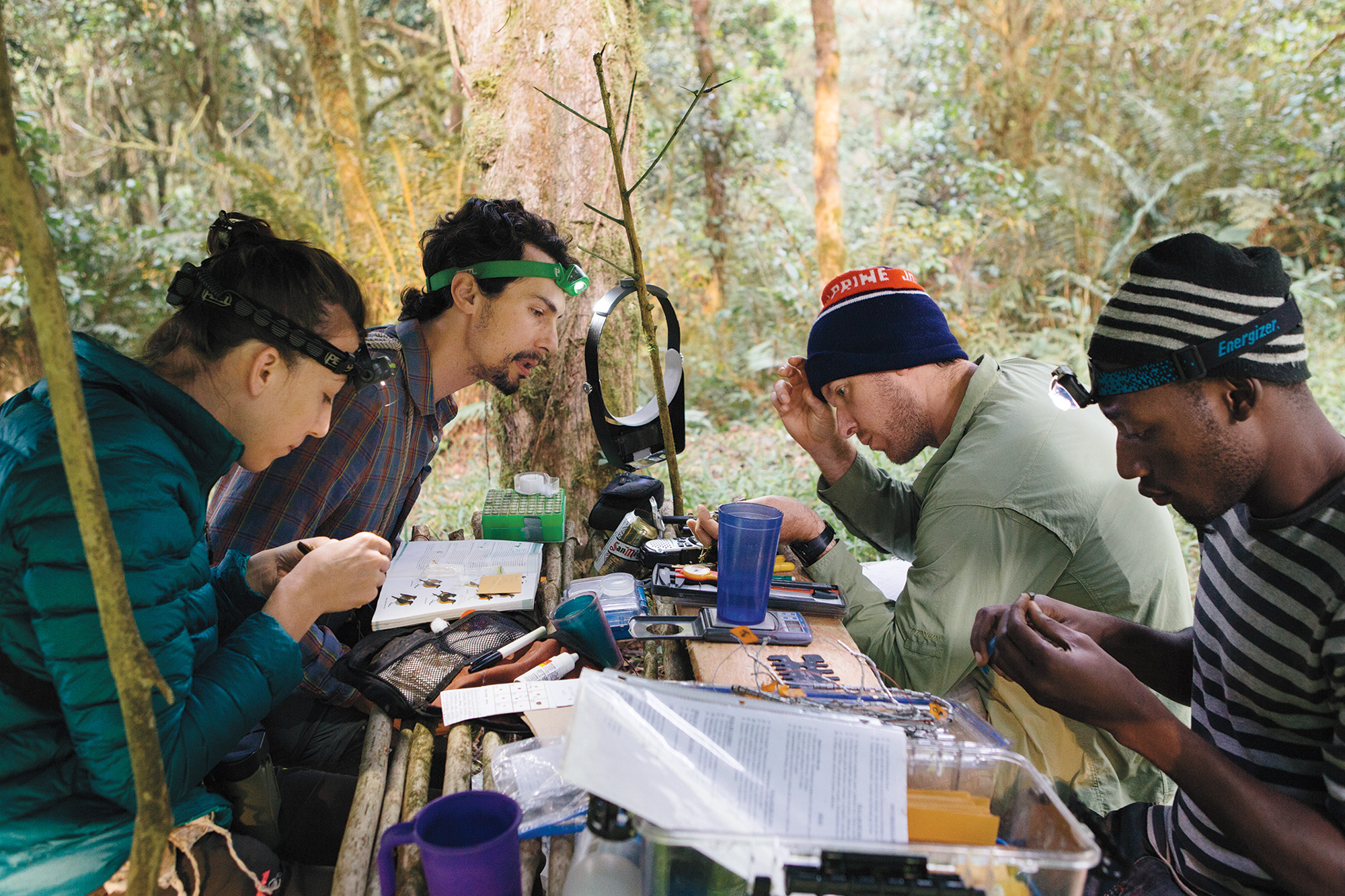 From left: Kristin Brzeski, Luke Powell, Jared Wolfe, and Amancio Motove Etingüe band birds and record biological information at North Camp, deep in the caldera. Tristan Spinski