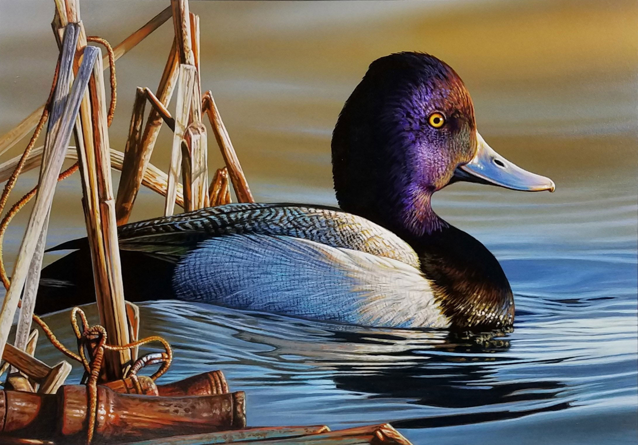 The winning entry to the 2020 Duck Stamp contest featured a Lesser Scaup and a lost duck call. Illustration: Richard Clifton