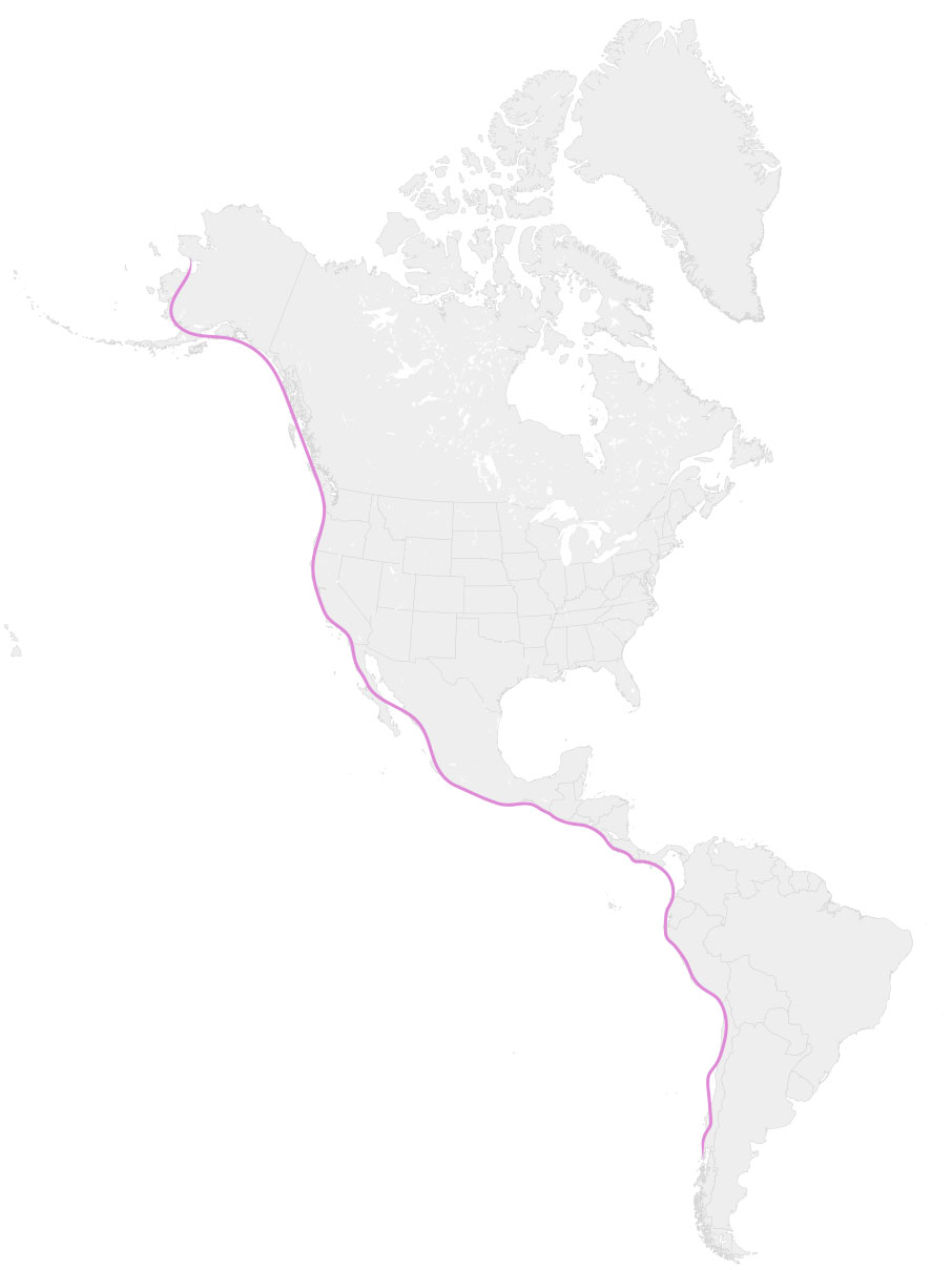 Ruta migratoria del Pacífico