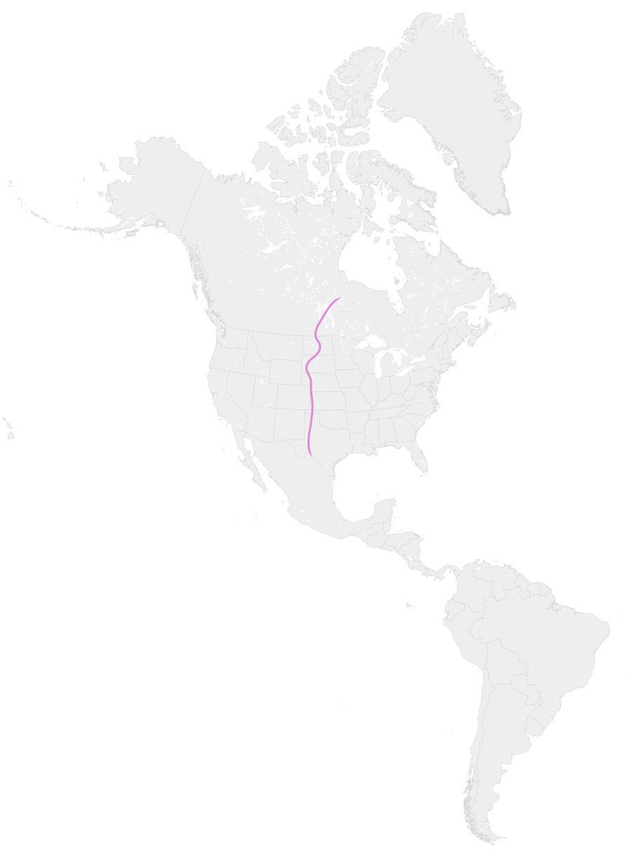 Ruta migratoria central