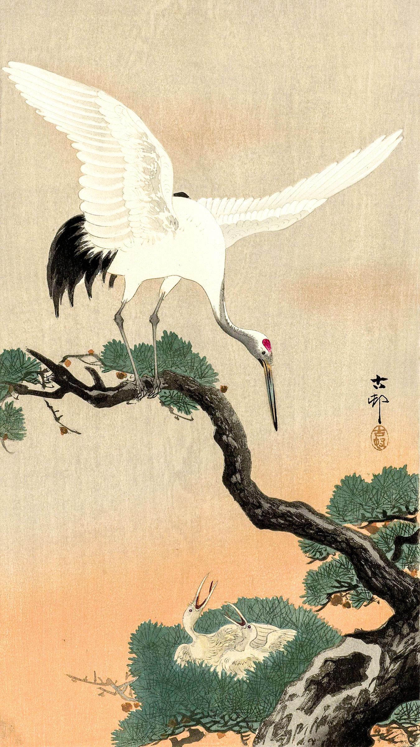Pine tree and Crane, woodcut by Ohara Koson, 20th century Japan. Everett Collection/Alamy