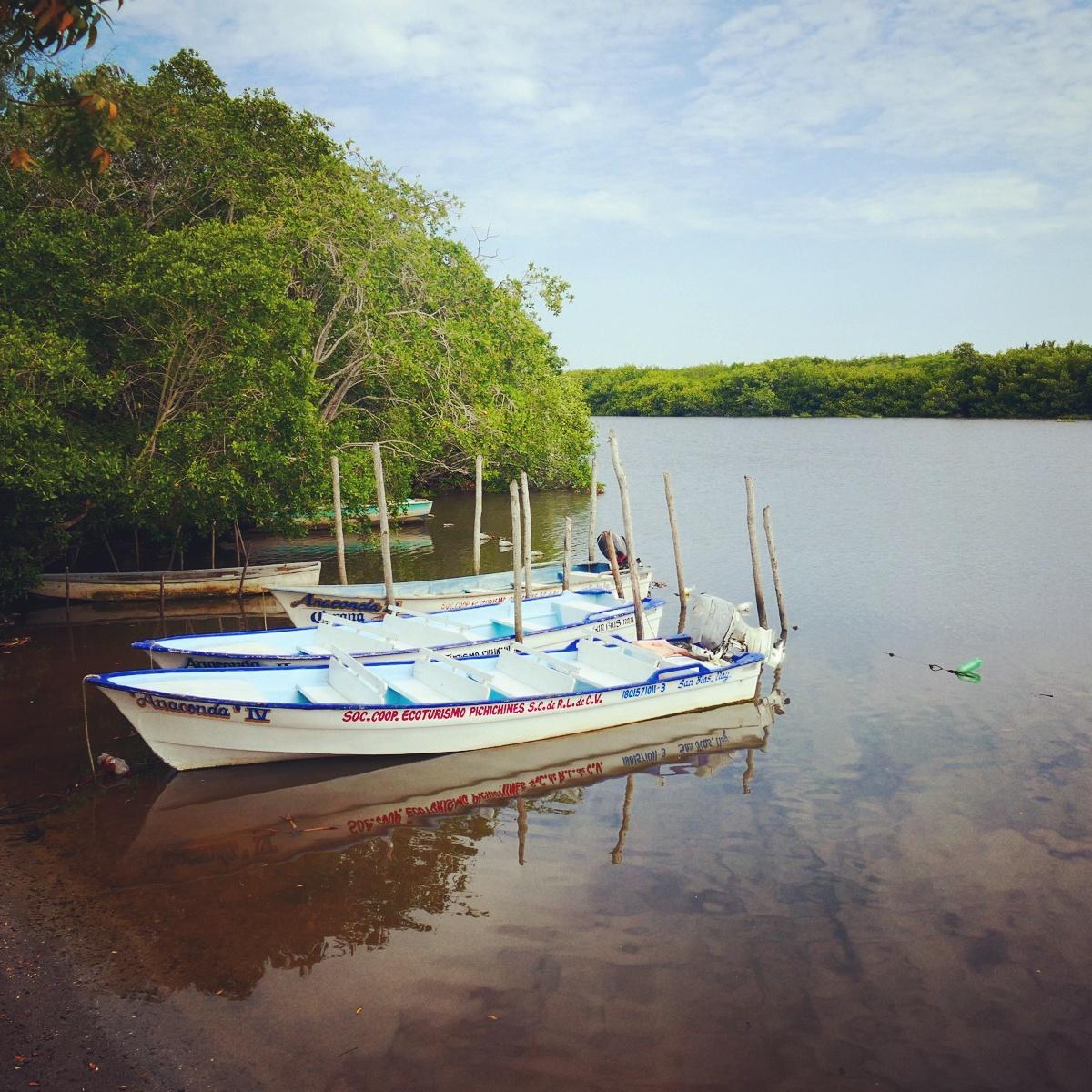 Boats sit ready at the edge of the San Blas mangroves. Noah Strycker
