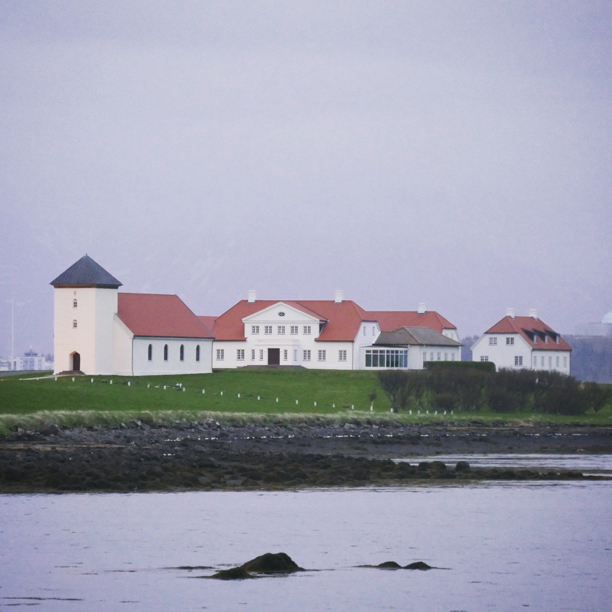 The home of Iceland's president is a good birding spot, even at four in the morning. Noah Strycker