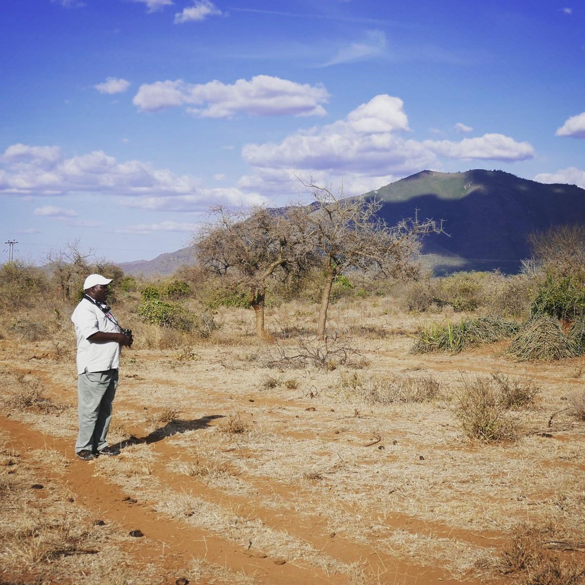 Anthony spots birds at Mkomazi National Park. Noah Strycker