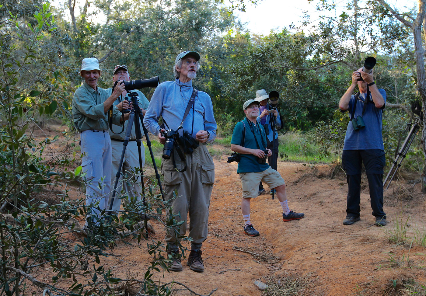 Rob Norton, third from left, leads a group of birders in search of warblers and other small birds in Viñales, Cuba. Julia Schmalz