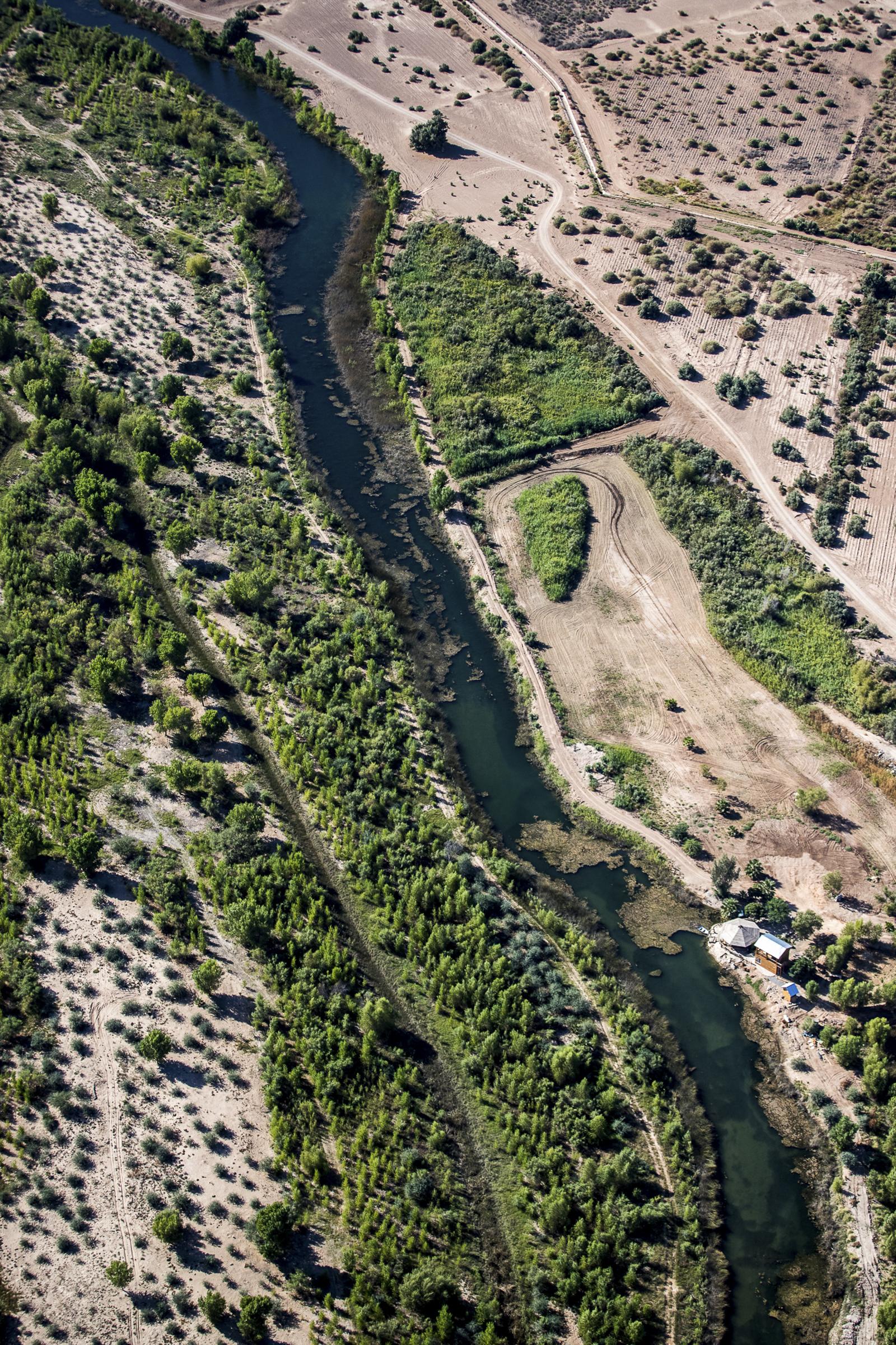 Riparian habitat along the Colorado River Delta. Jennifer Pitt/Audubon