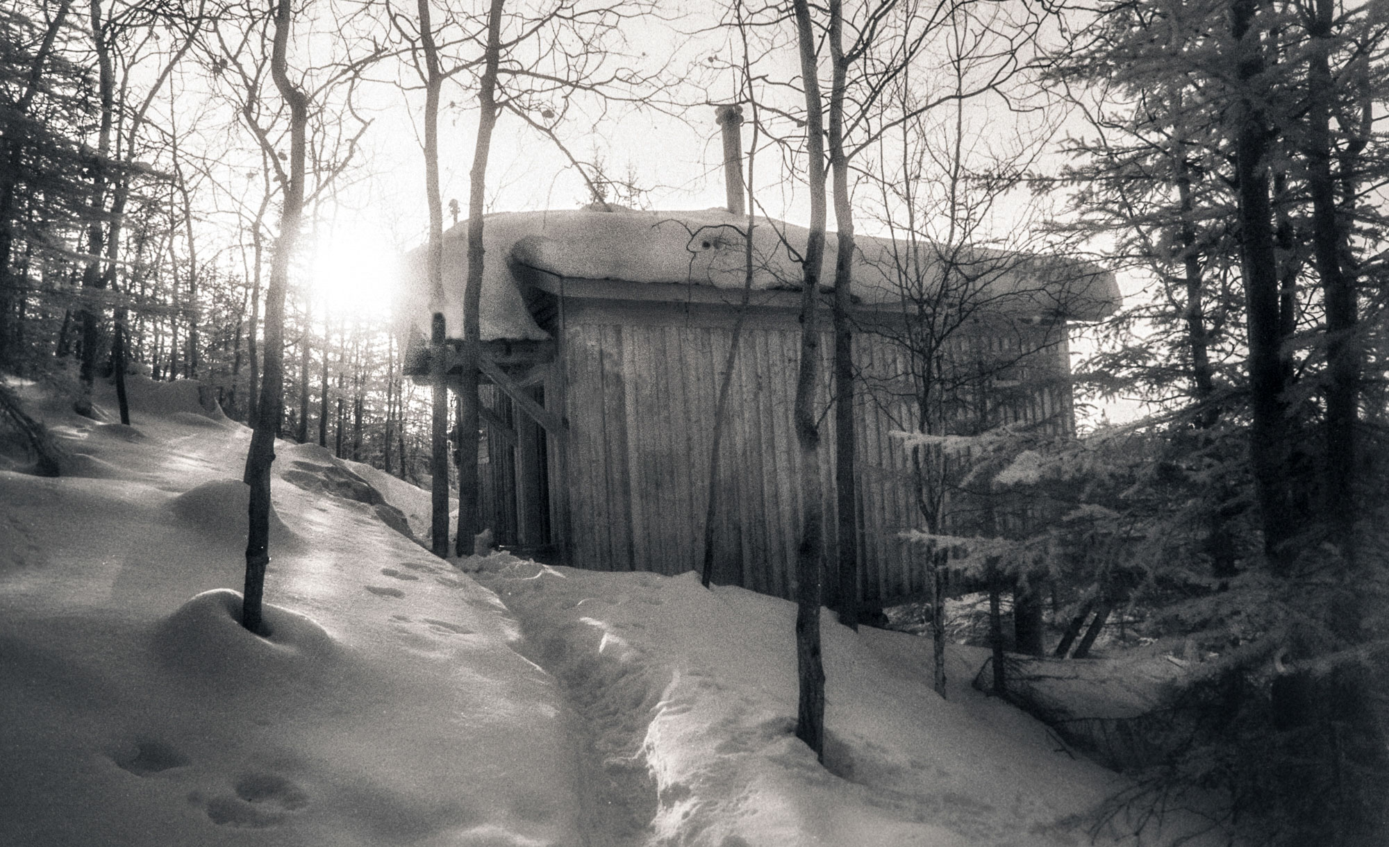 Adams' studio in Fairbanks, Alaska, 1996. Dennis Keeley