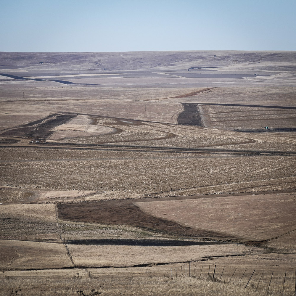The high grasslands around Wakkerstroom are cold and dry in winter. Noah Strycker