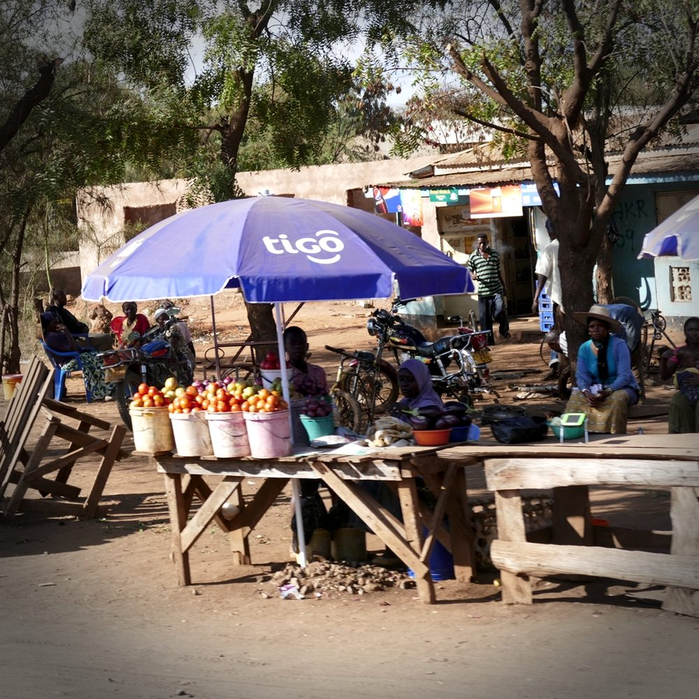 Roadside vegetable stands line the highway in small, northern Tanzanian villages. Noah Strycker