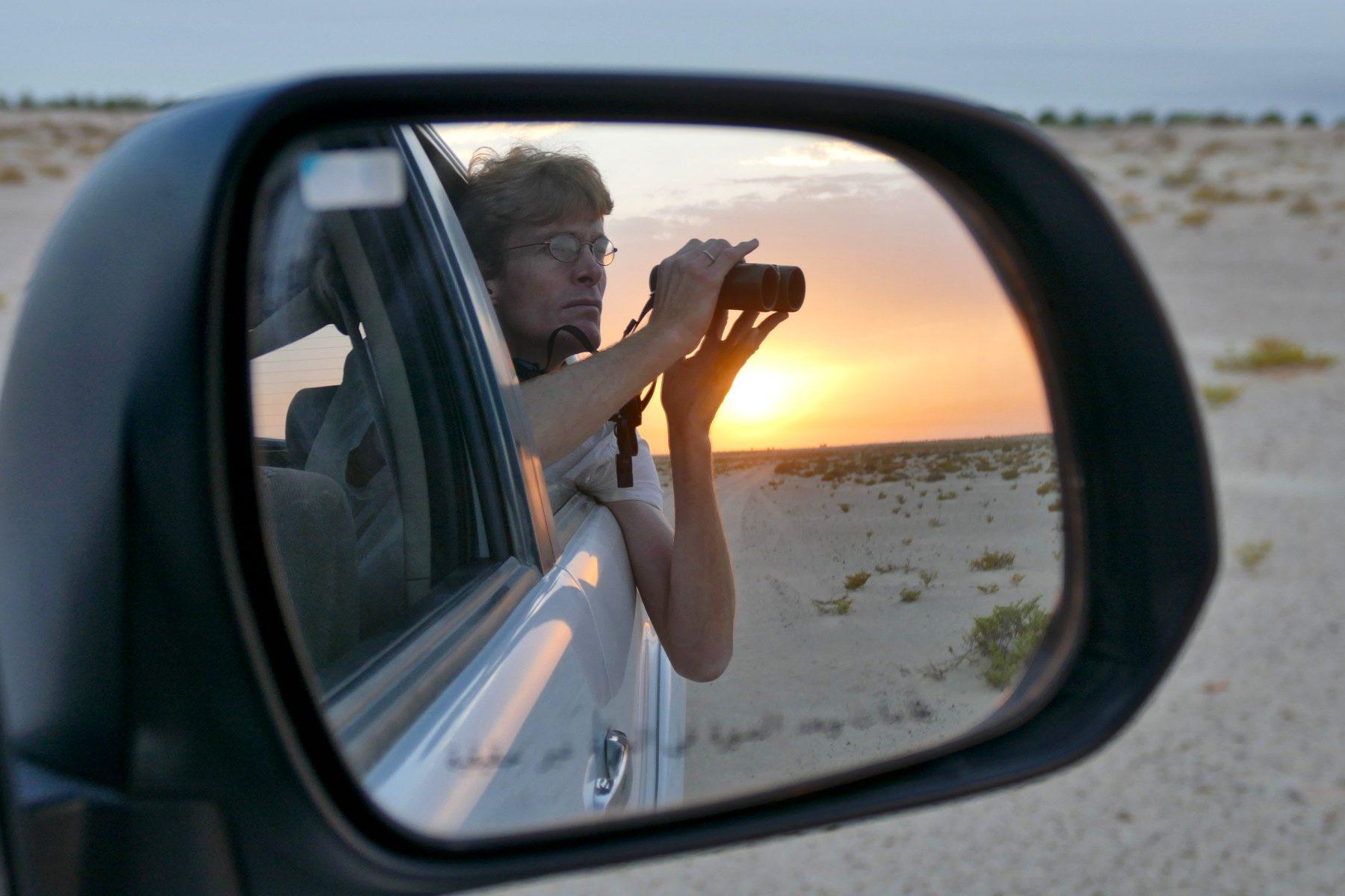 Oscar looks for birds against the sunrise outside of Dubai. Noah Strycker