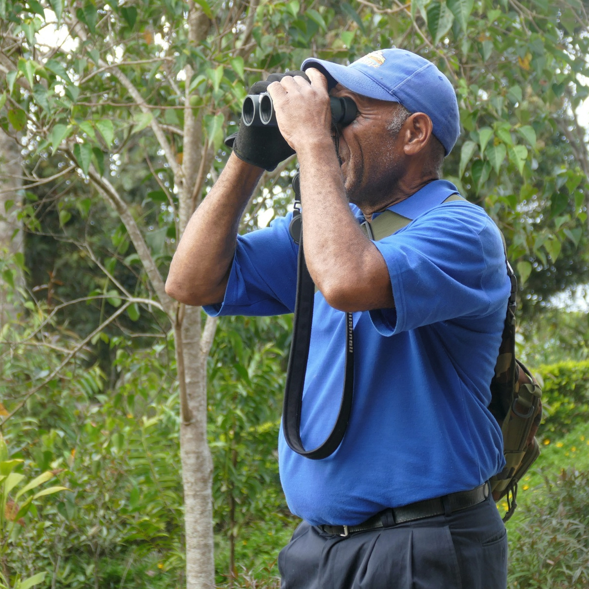 Joseph Ando scans for birds at Rondon Ridge. Noah Strycker