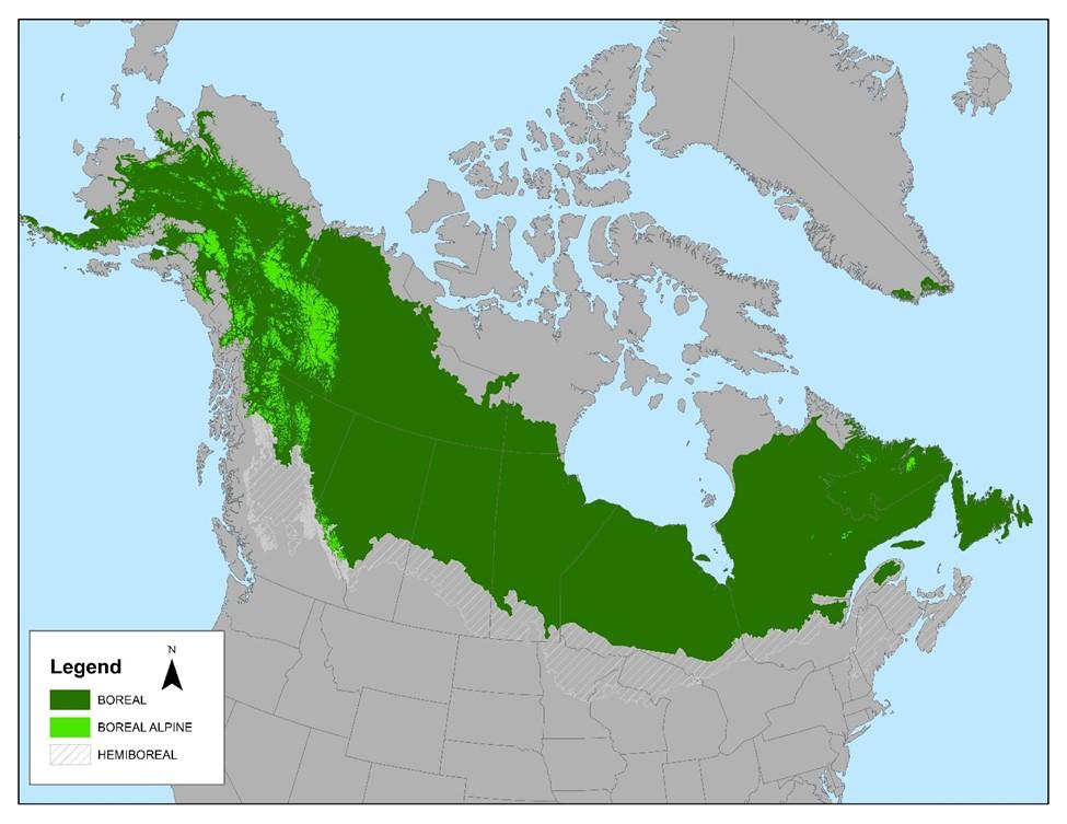 North America's boreal forest. Map: Audubon