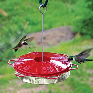Audubon Hummingbird Feeder Classic 12 oz.