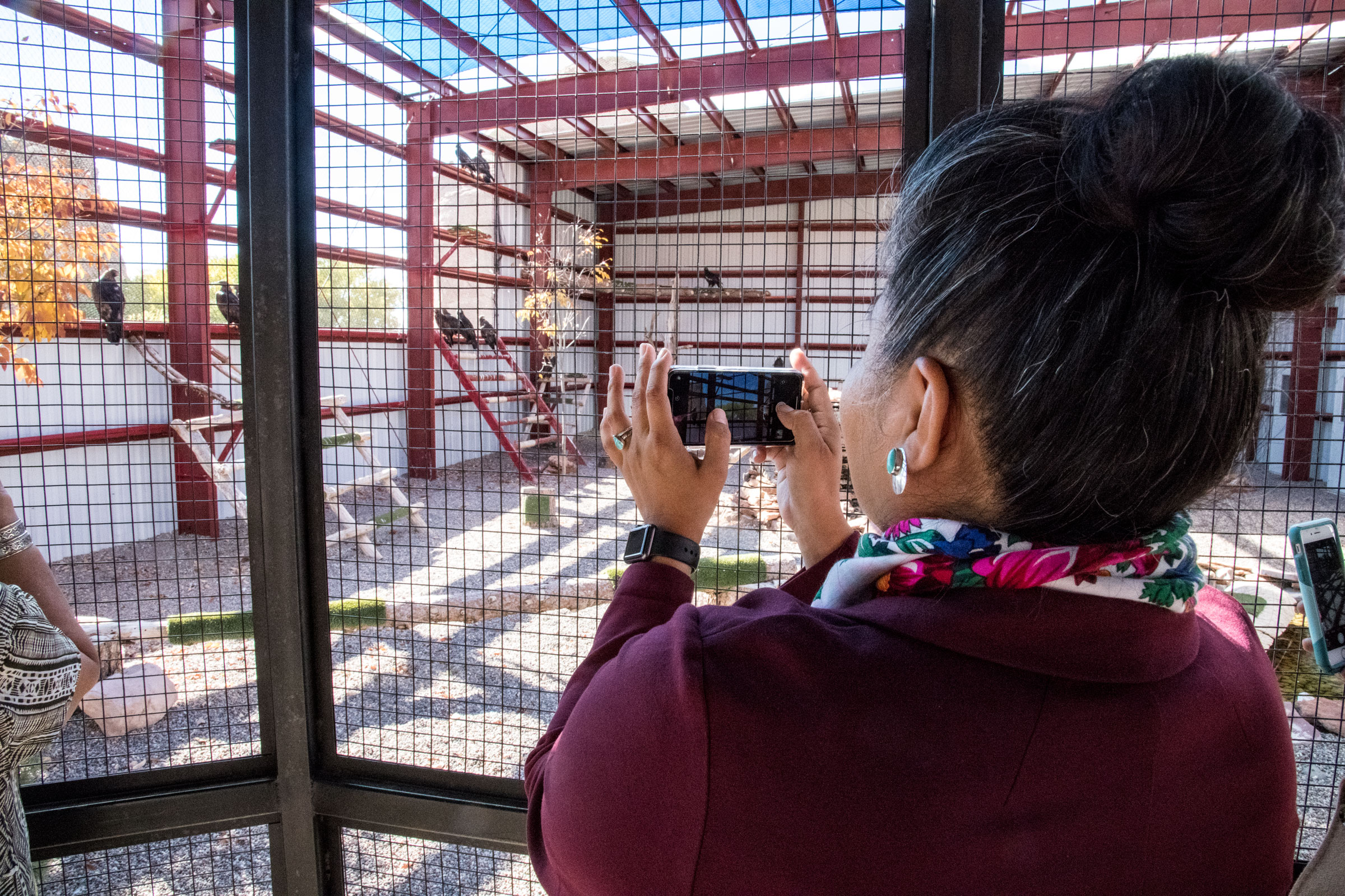 Tiffany Shaw photographs Iron Heart, a Golden Eagle named after her father. The bird was brought to the Navajo Nation aviary after being found shot and stripped of its tail feathers. Dawn Kish