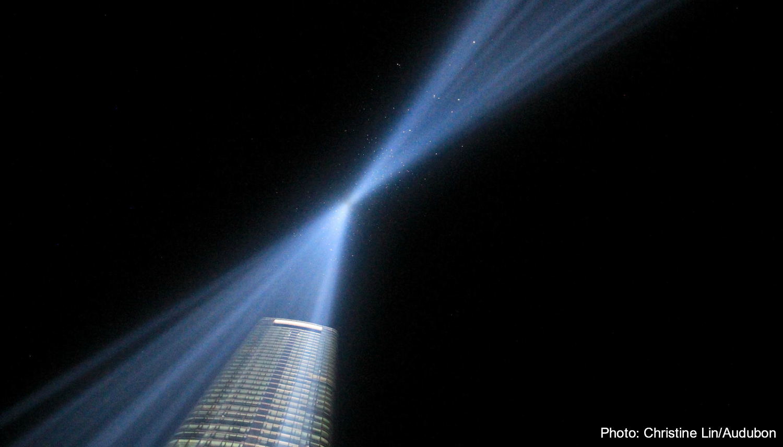 Tribute in Lights Christine Lin