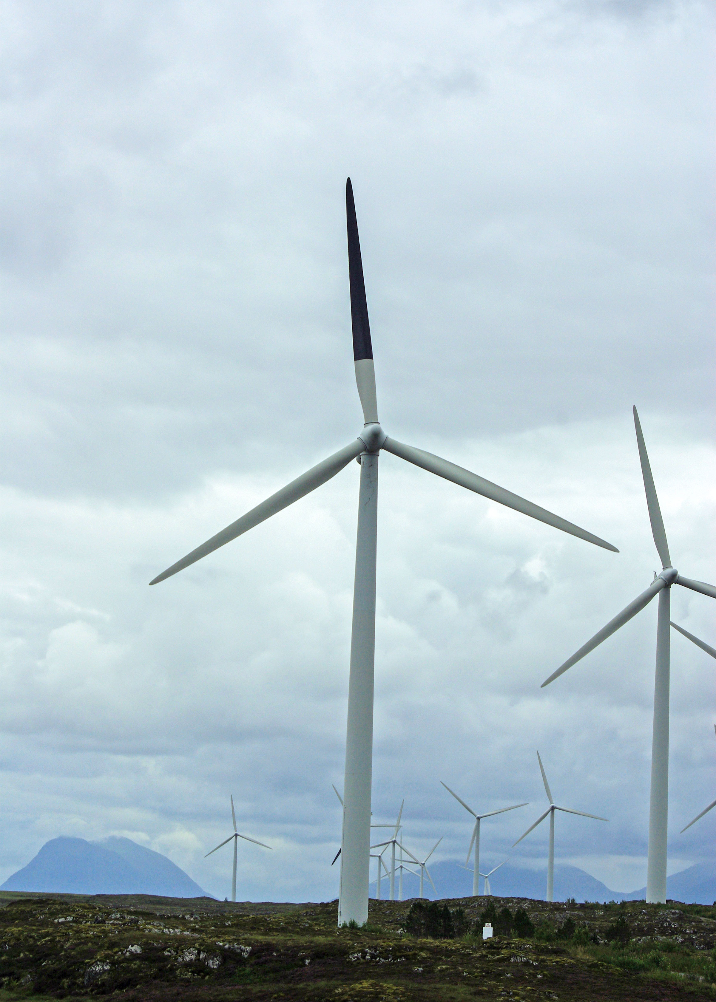 Wind turbine in the Smøla wind‐power plant with painted rotor blade. Roel May