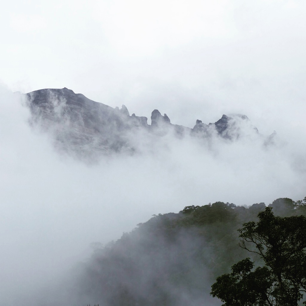 The jagged summit of Mount Kinabalu pokes through the clouds. Noah Strycker