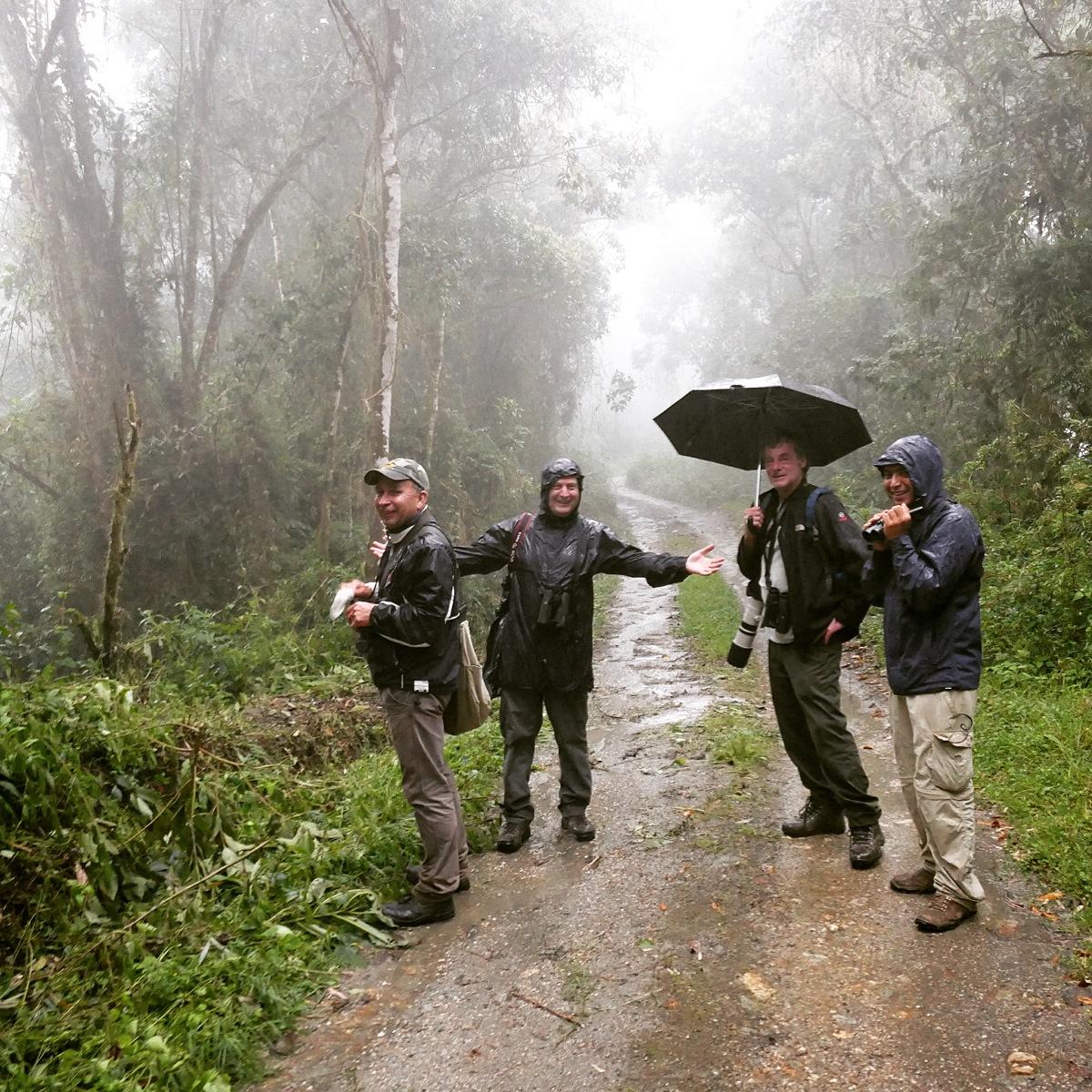 Albeiro, Dave, Jeff, and Jose look for birds at Rio Blanco. Noah Strycker