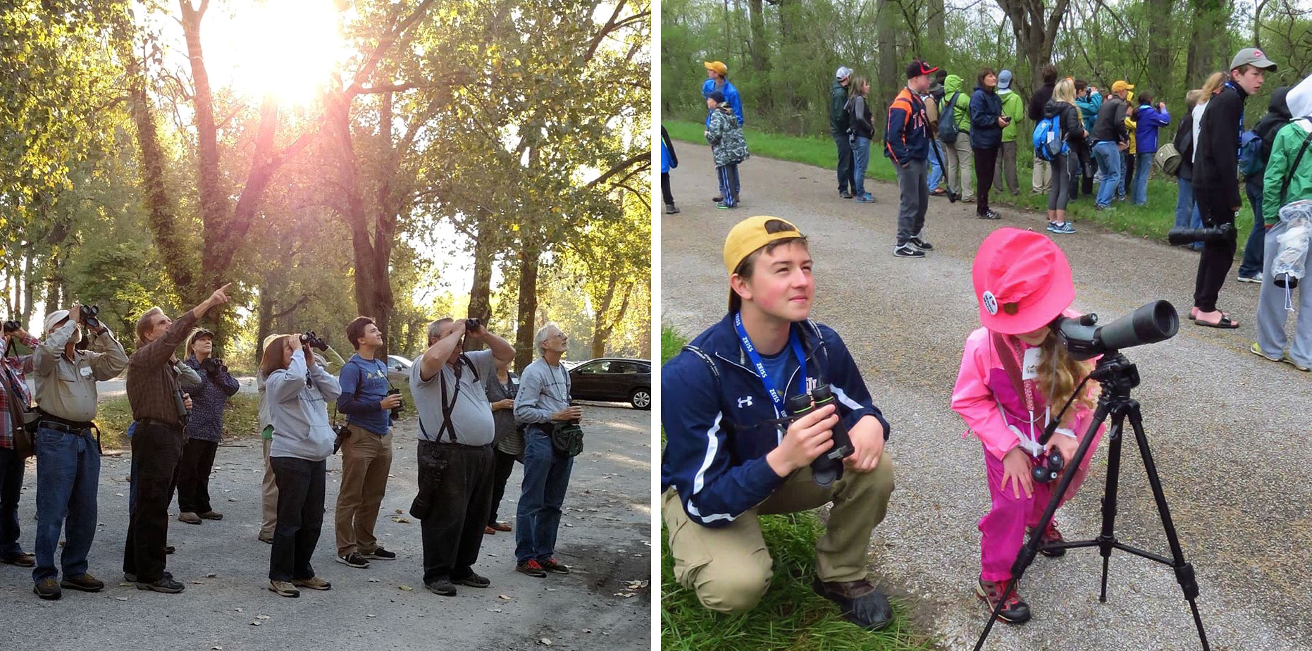 From left: Bird expert Kenn Kaufman, a mentor to the writer, leads him and a group of birders on a walk at Magee Marsh, Ohio; The writer helps a fledgling birder use a spotting scope on the same walk. Photos: Kim Kaufman