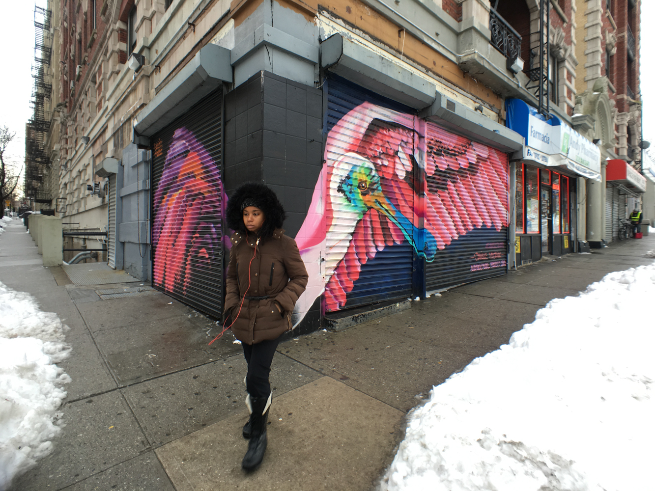 Danielle Mastrion's first Roseate Spoonbill for the Audubon Mural Project, located at 156th and Broadway, was removed during the building's renovation. She replaced it with a new Spoonbill at its current location, 11 blocks away. Mike Fernandez/Audubon