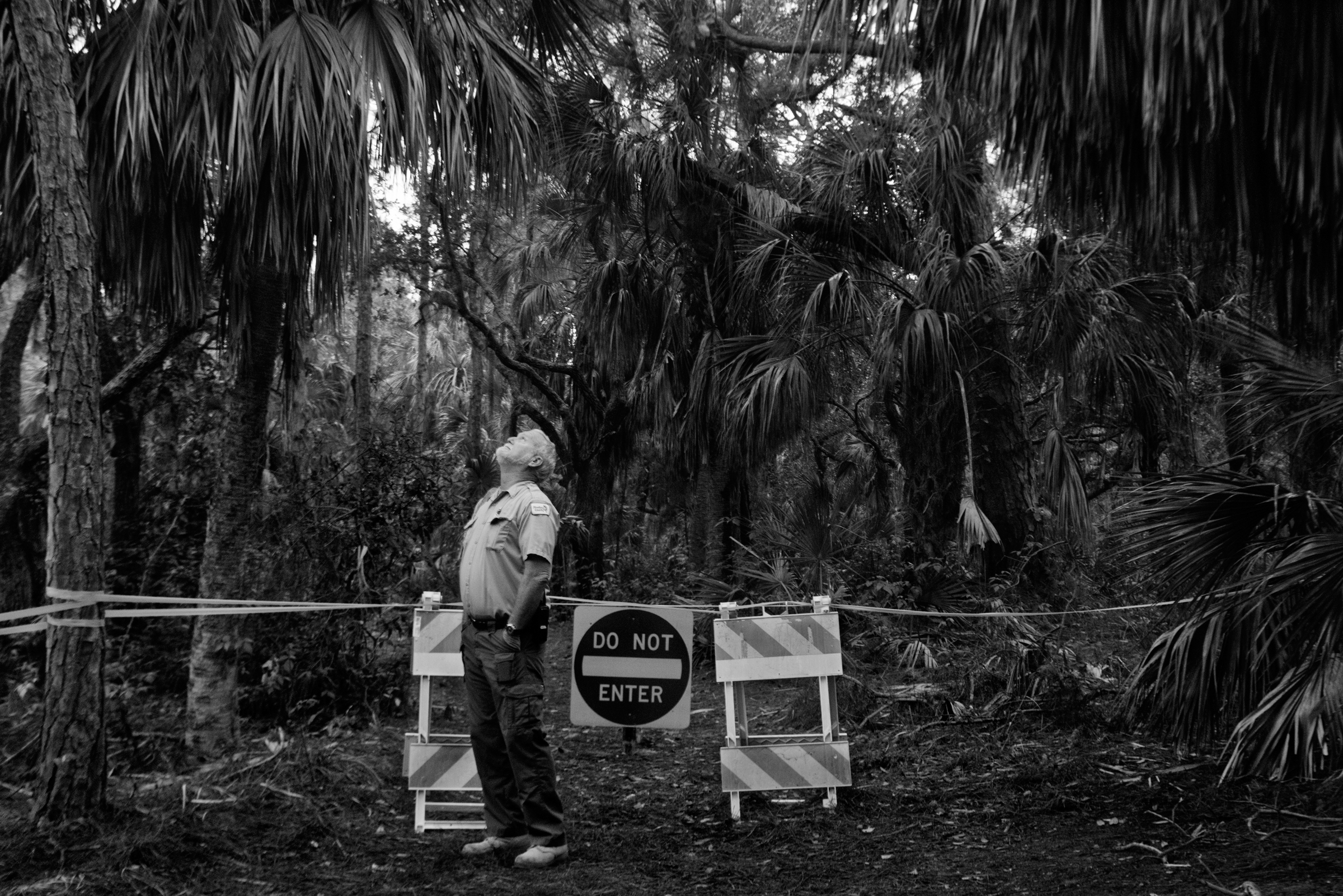 Barricades and signs protect nesting birds from prying eyes. In Florida's Fort De Soto Park, supervisor Jim Wilson tries to keep the peace between humans and birds. Melissa Lyttle