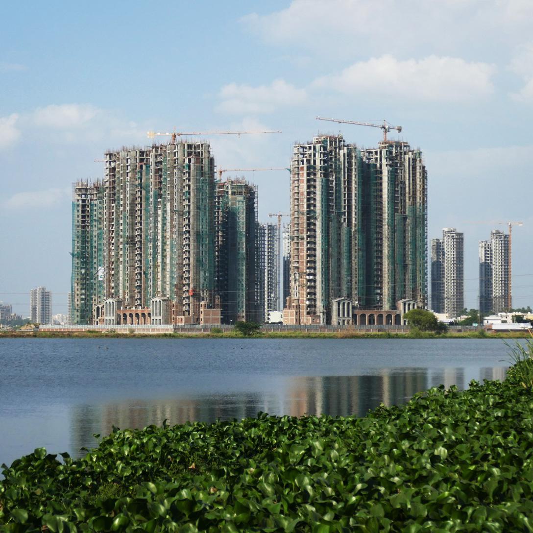 New housing developments rise behind an urban wetland on the outskirts of Delhi. Noah Strycker