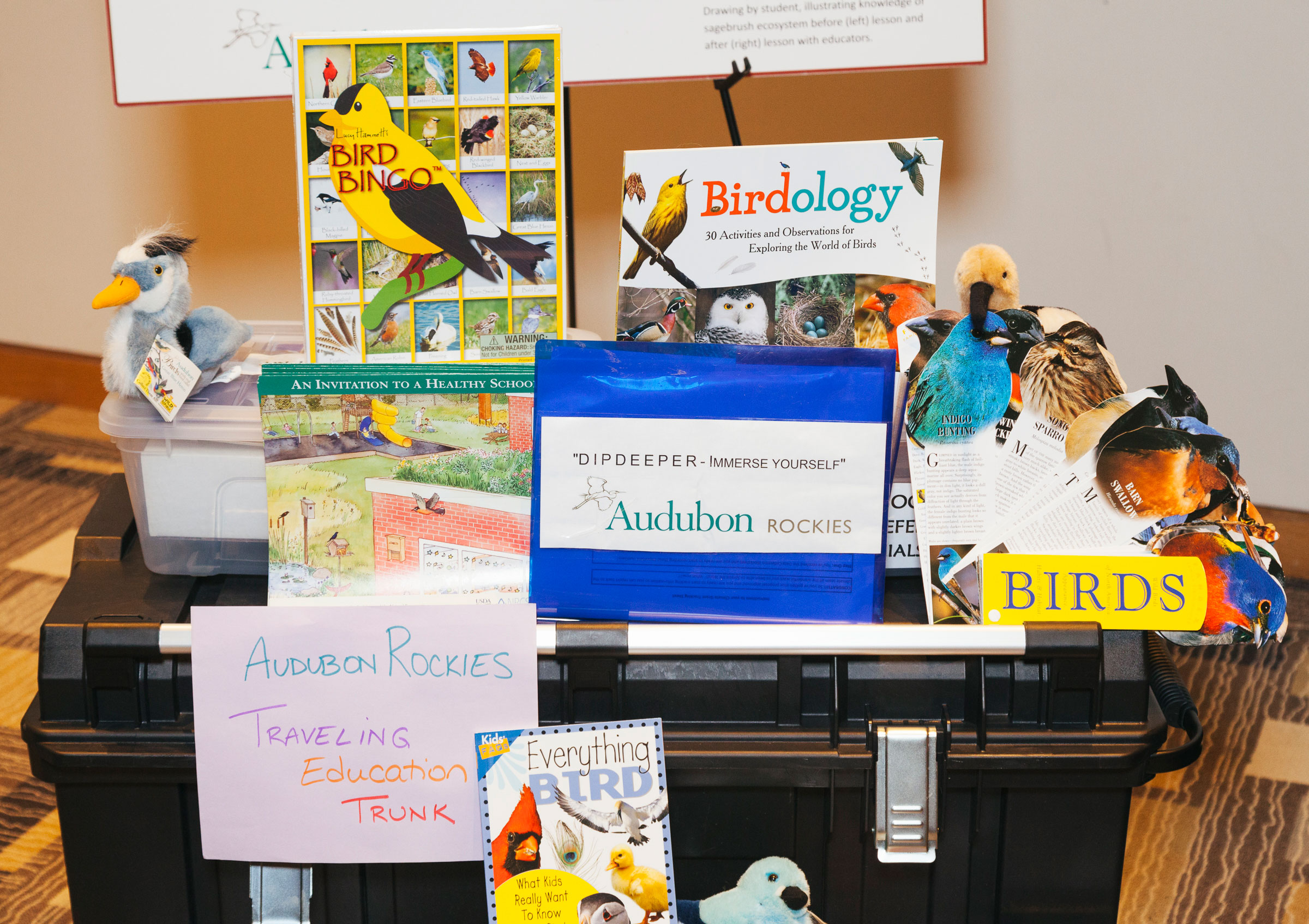 A display of some of the activies from Audubon Rockies' Birds and Climate Educational Traveling Trunk. Morgan Rachel Levy