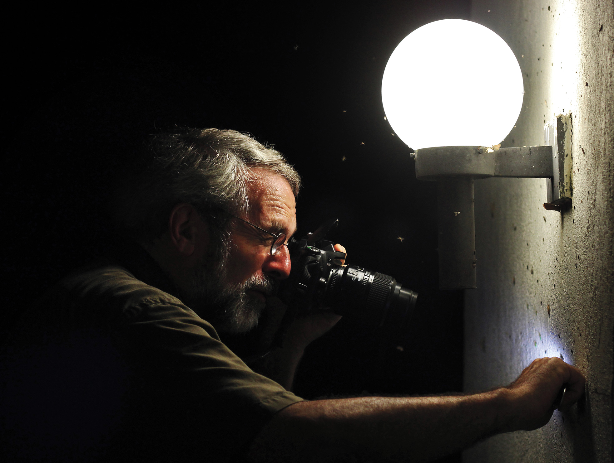 University of Georgia ecologist John Pickering documents moths drawn to a white wall at the Sandy Creek Nature Center in Athens, Georgia. Raney Gregg