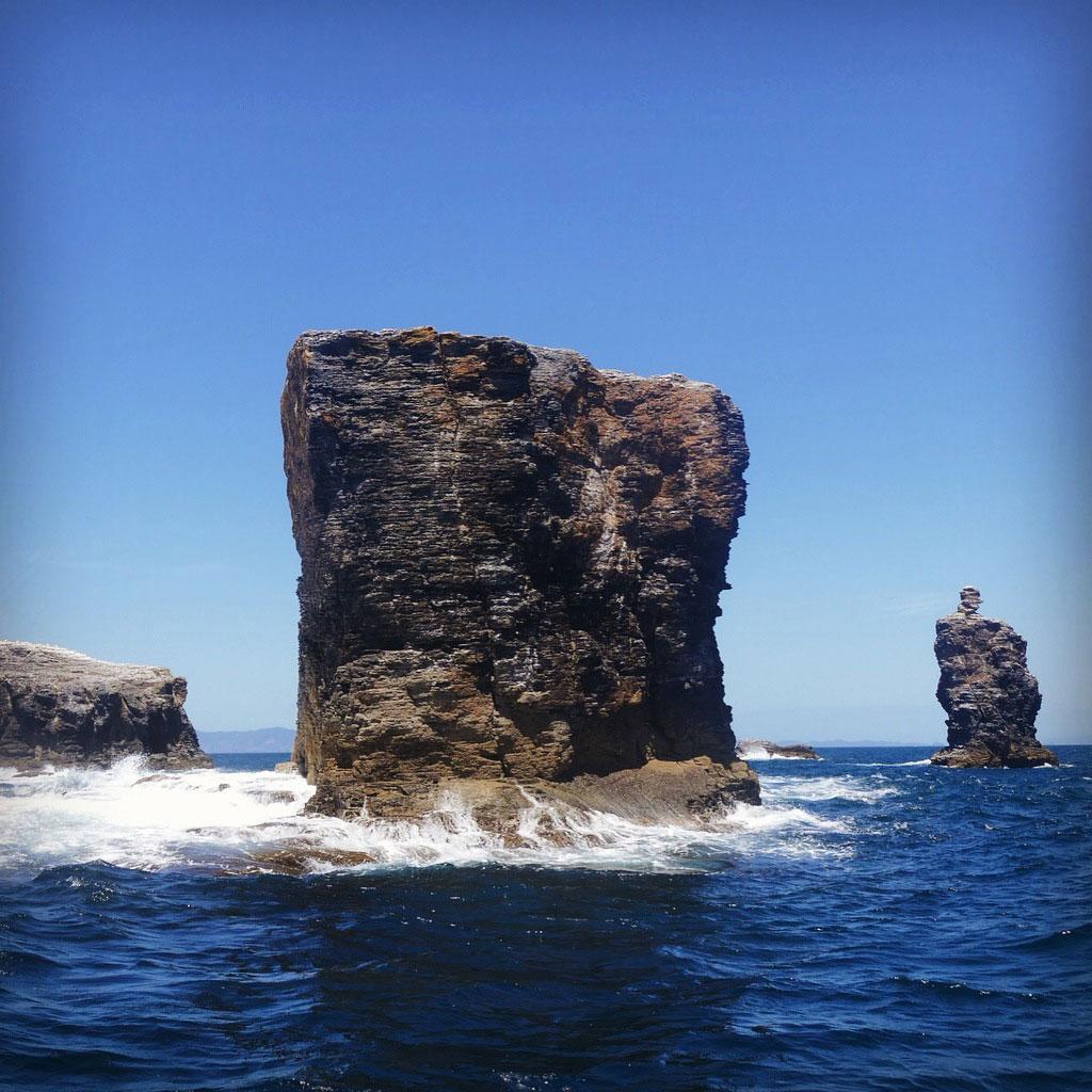 The Maori Rocks rise offshore in the Hauraki Gulf. Noah Strycker