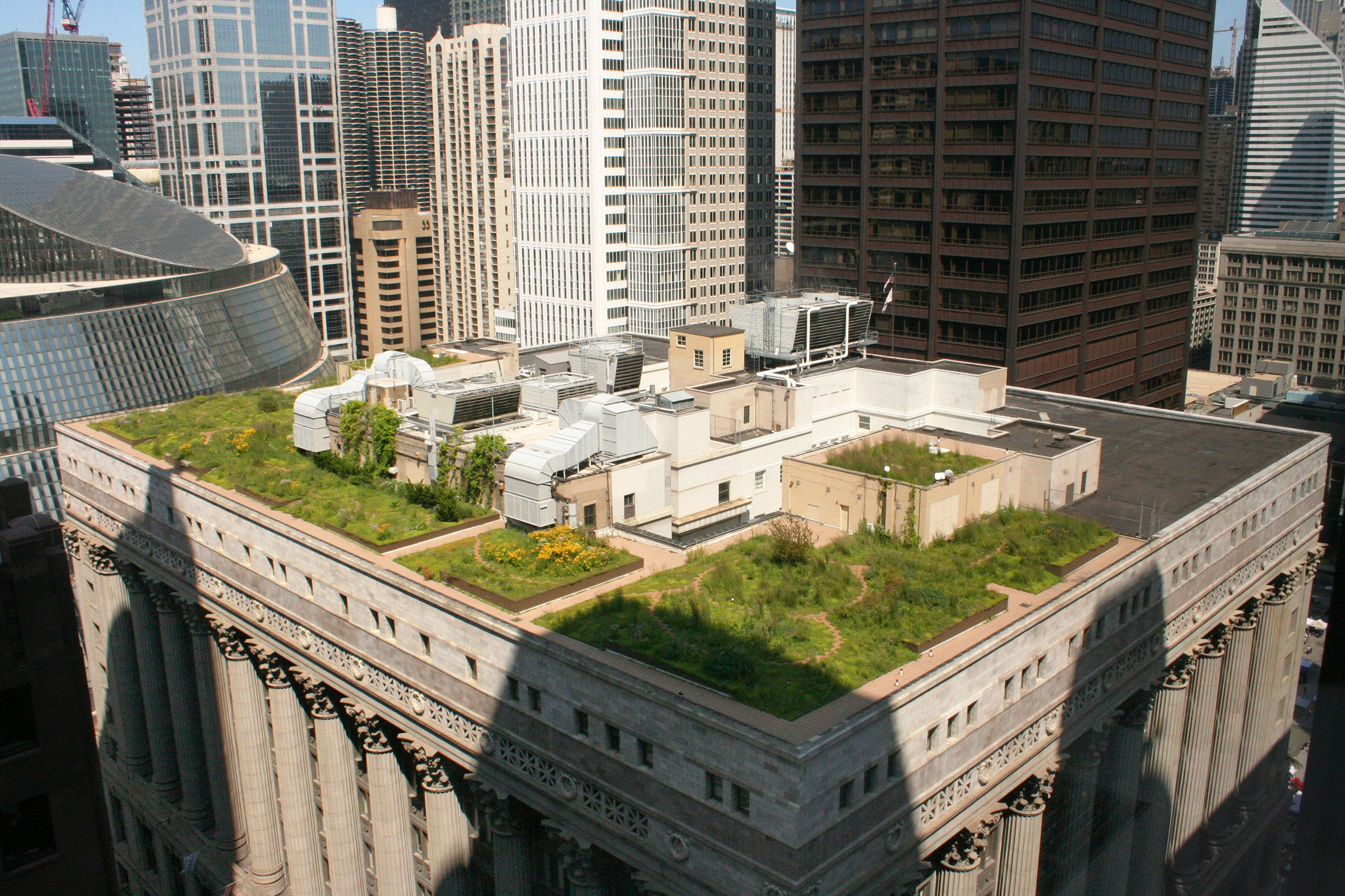 Chicago City Hall Green Roof. Conservation Design Forum