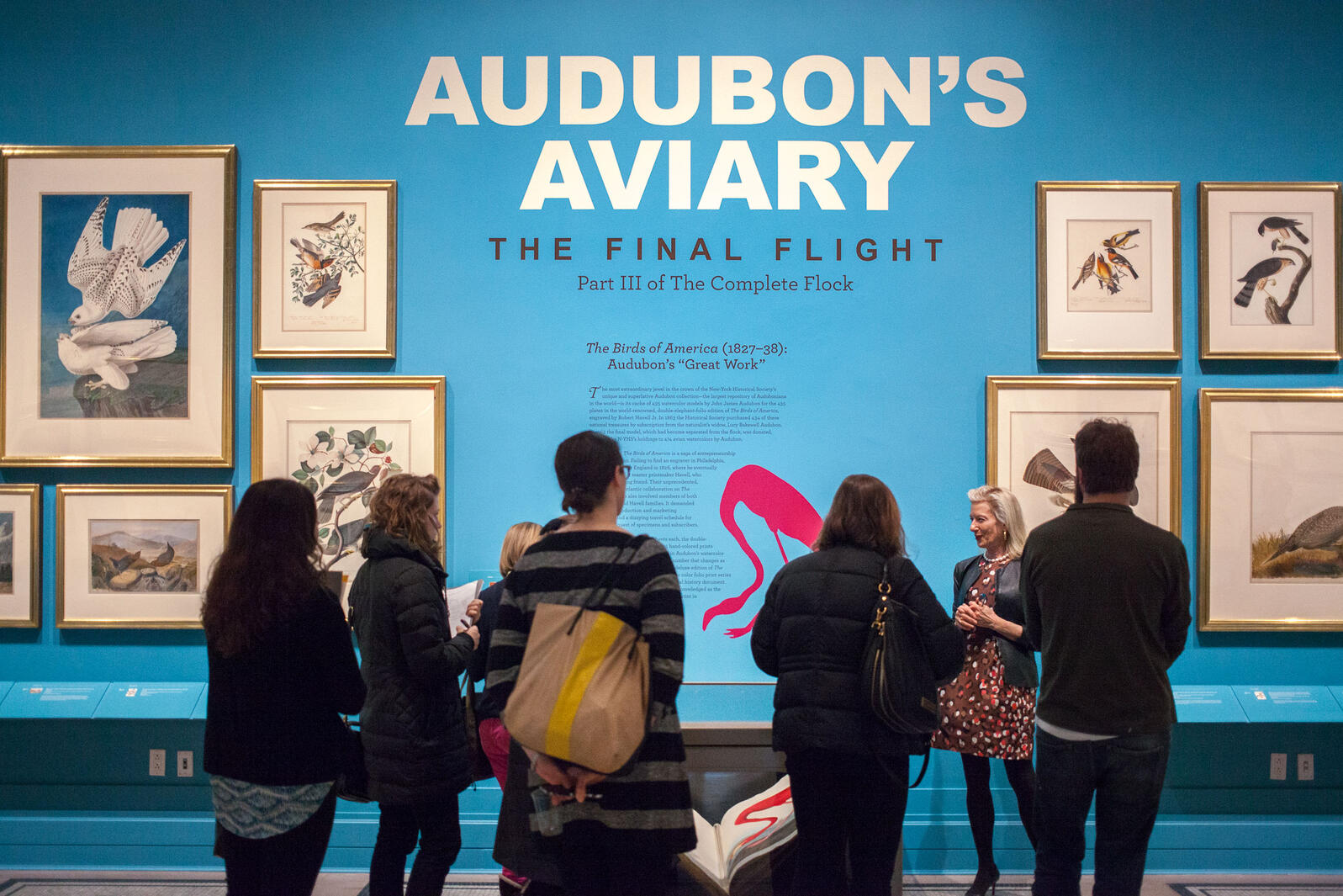 Curator of Drawings Roberta Olson gives a tour of Audubon's Aviary: Final Flight, during a press conference at the New-York Historical Society on March 5th. Camilla Cerea/National Audubon Society