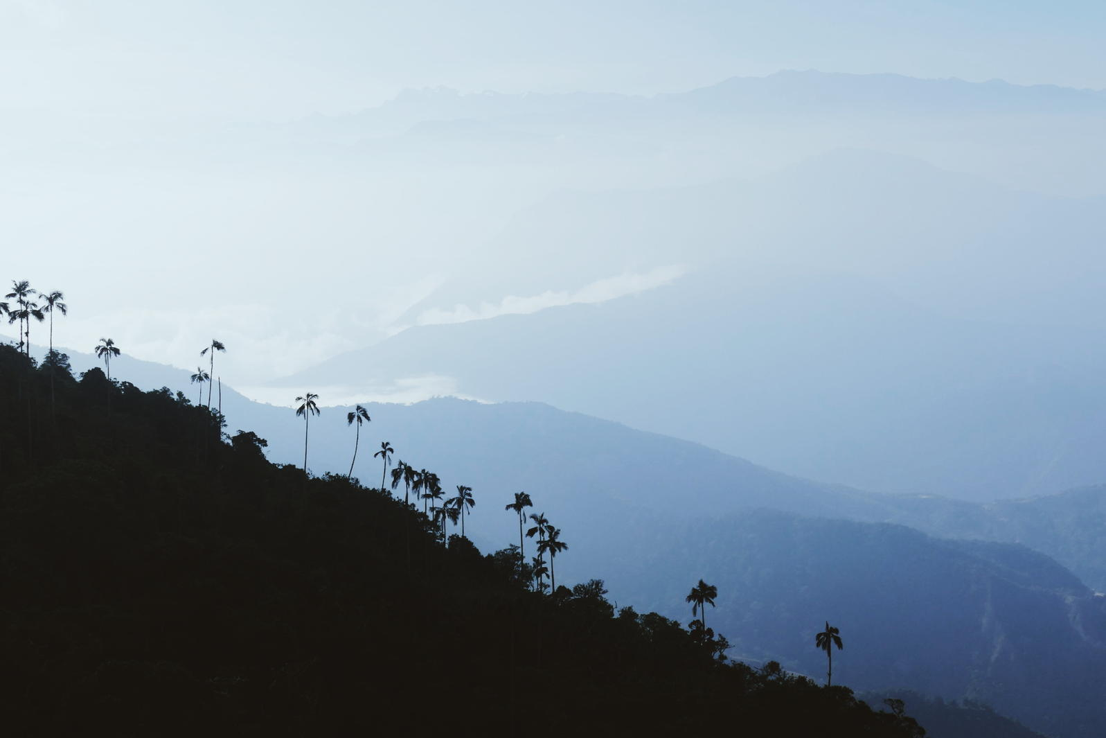 On a clear day, the view from the top of San Lorenzo Ridge is breath-catching, Colombia. Noah Strycker