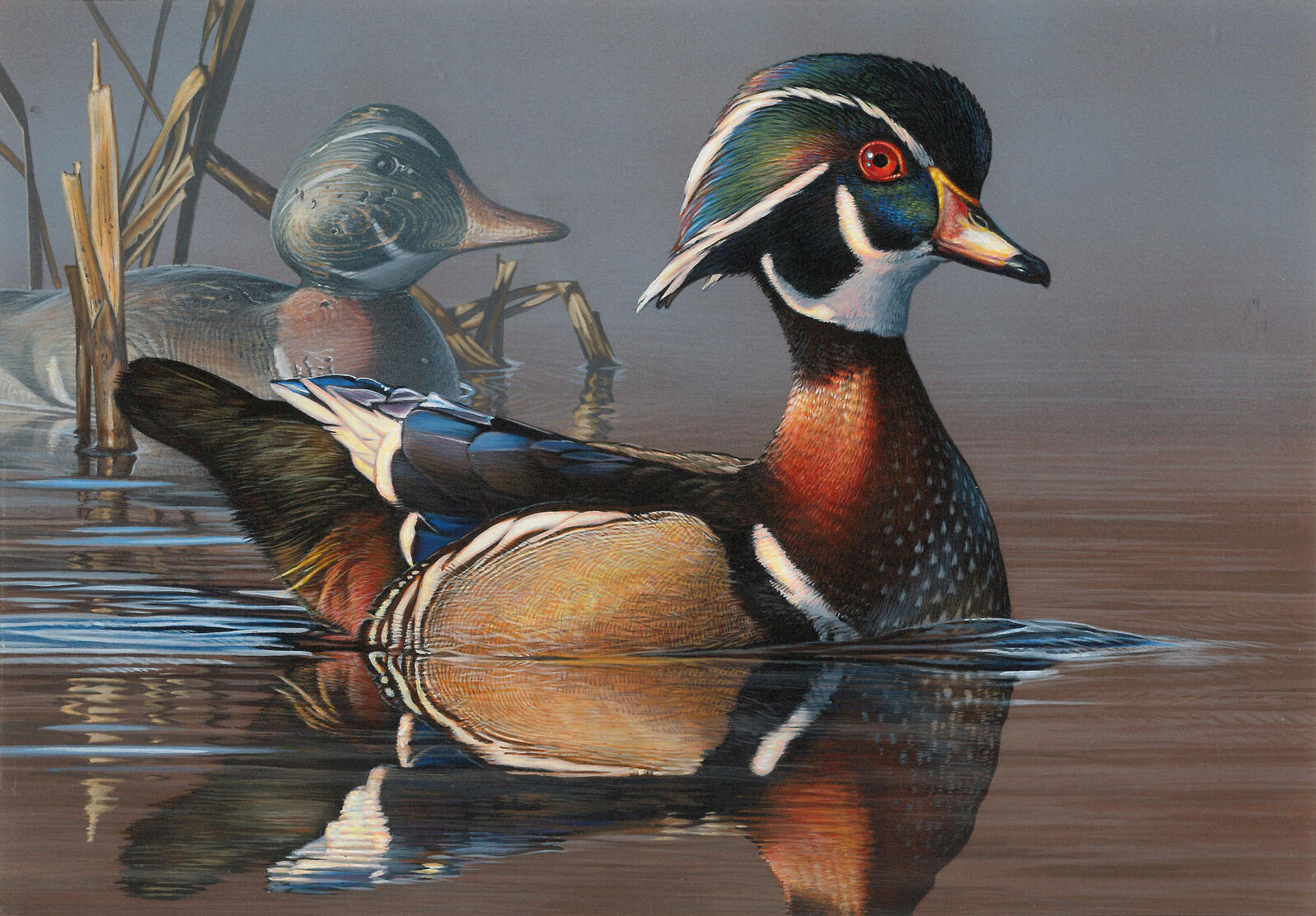 Acrylic painting of a Wood Duck and decoy by Scot Storm, winner of the 2018 Federal Duck Stamp Contest, which had a hunting theme.
